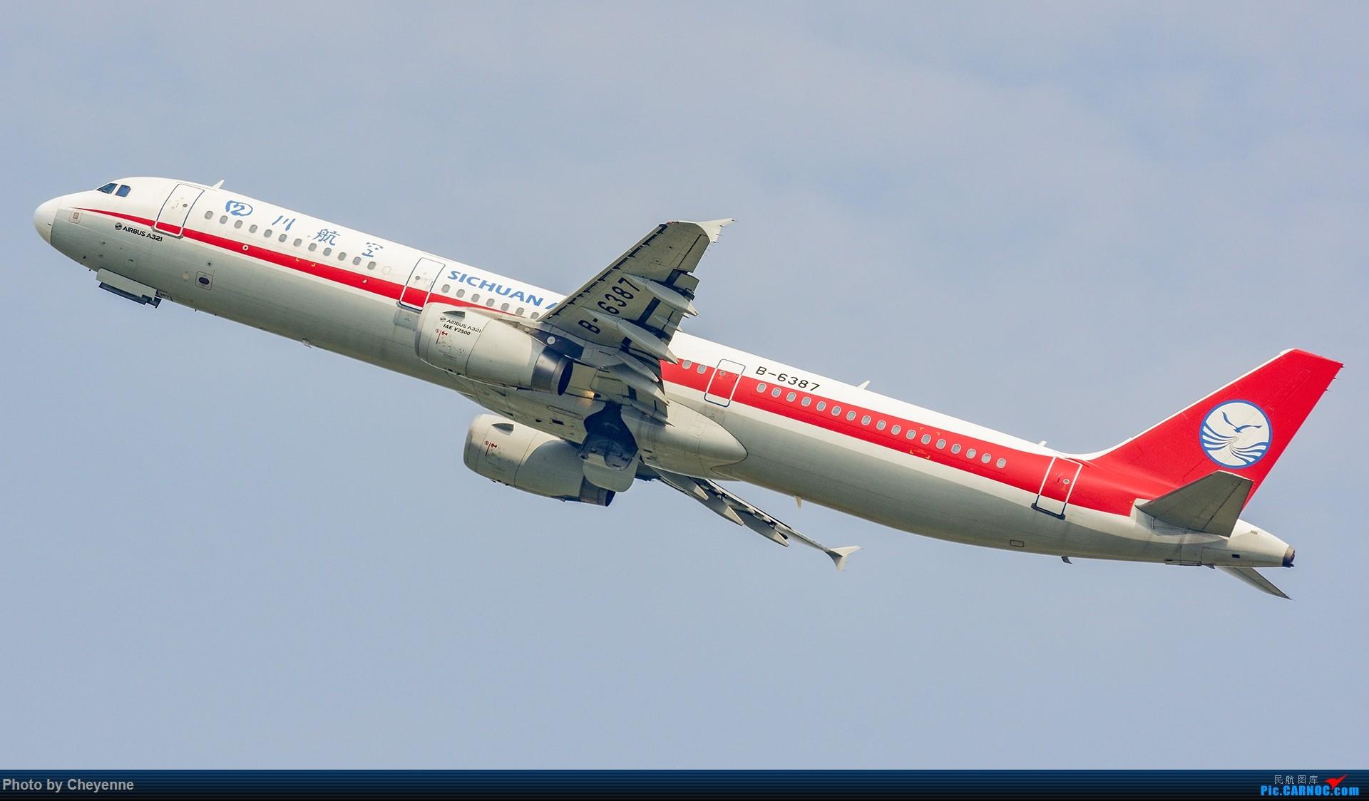 Re:[原创]蓉卢兹之日常 AIRBUS A321-200 B-6387 中国成都双流国际机场