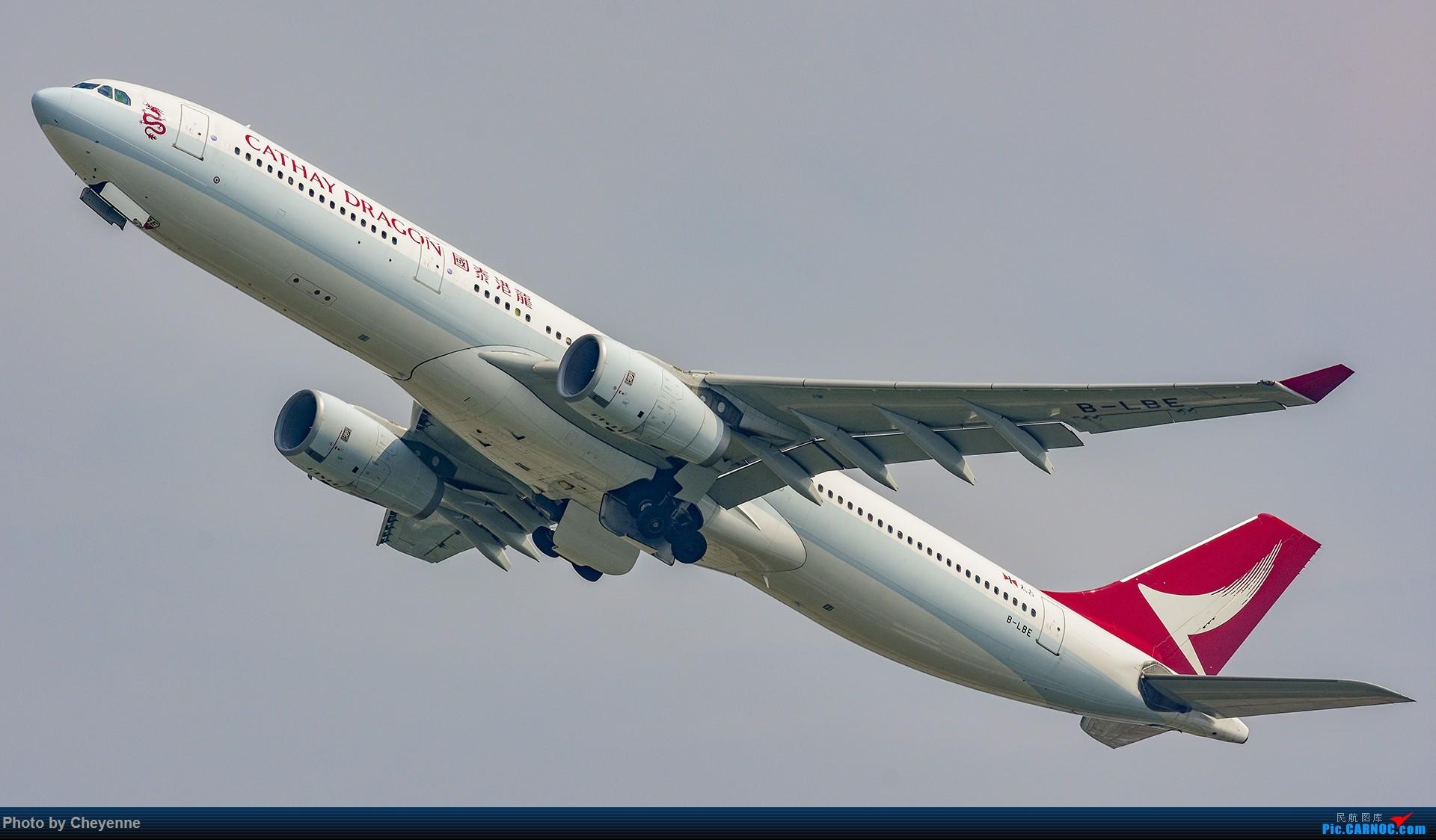 Re:[原创]蓉卢兹之日常 AIRBUS A330-300 B-LBE 中国成都双流国际机场