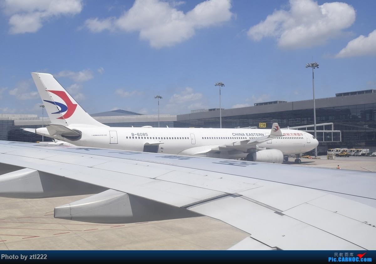 Re:[原创]Re:[原创]【天天飞旅】第九集:暑假再探魔都---东航京沪航线再体验 AIRBUS A330-300 B-6085 中国上海虹桥国际机场