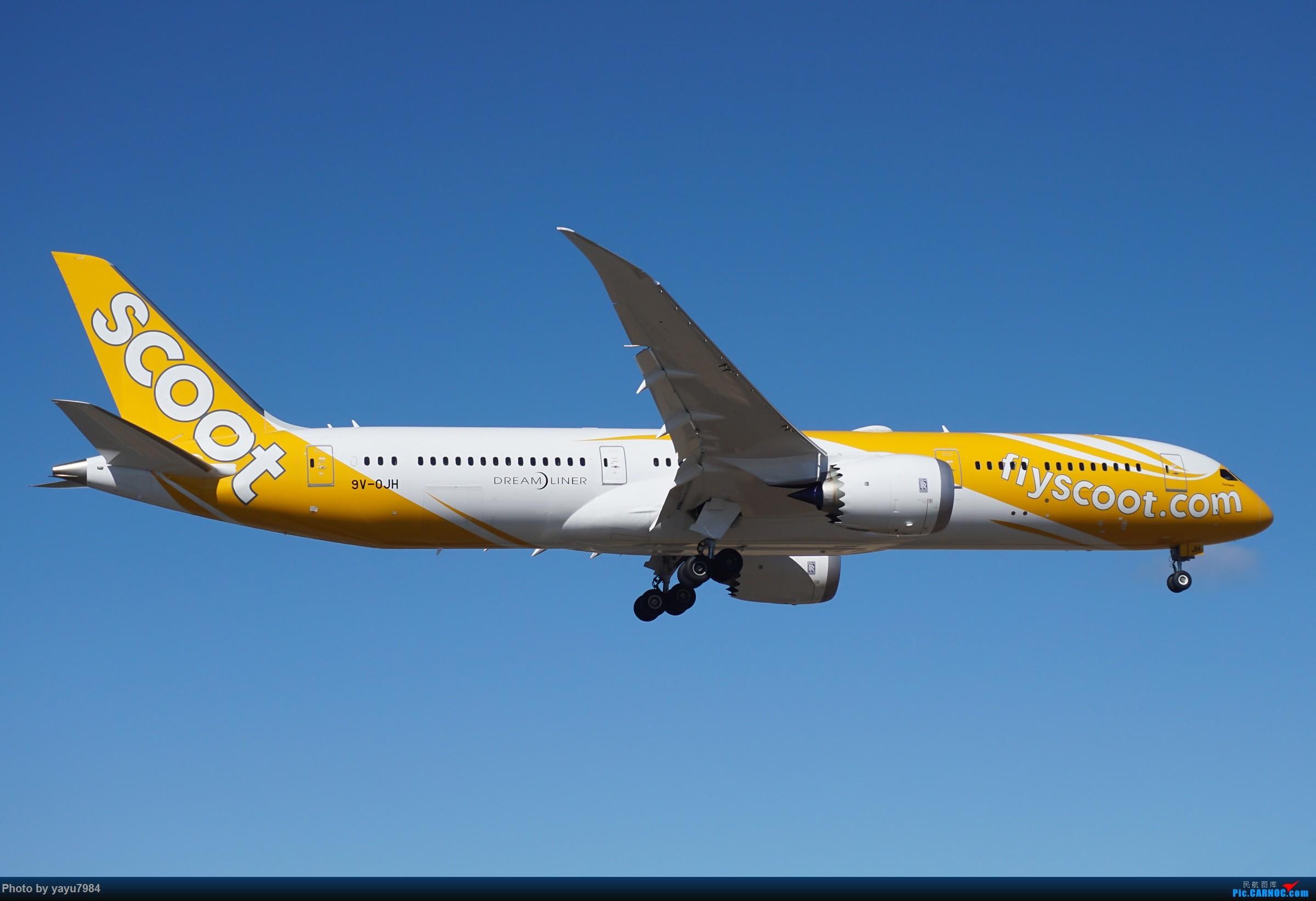 Re:[原创][SYD] 25跑道头打卡,有幸收集到4架MU的A332 BOEING 787-9 9V-OJH 澳大利亚悉尼金斯福德·史密斯机场