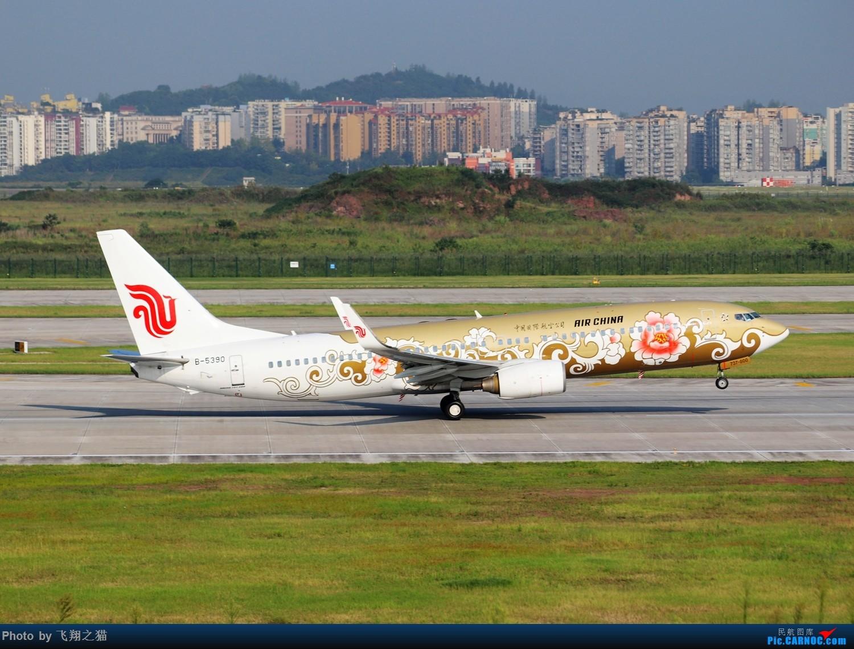 Re:[原创]CKG拍机(海航熊大,国航7M8,反正就是今天搞着了) BOEING 737-800 B-5390 重庆江北国际机场