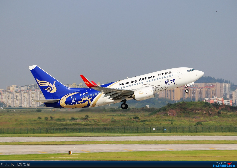 Re:CKG拍机(海航熊大,国航7M8,反正就是今天搞着了) BOEING 737-700 B-1461 重庆江北国际机场