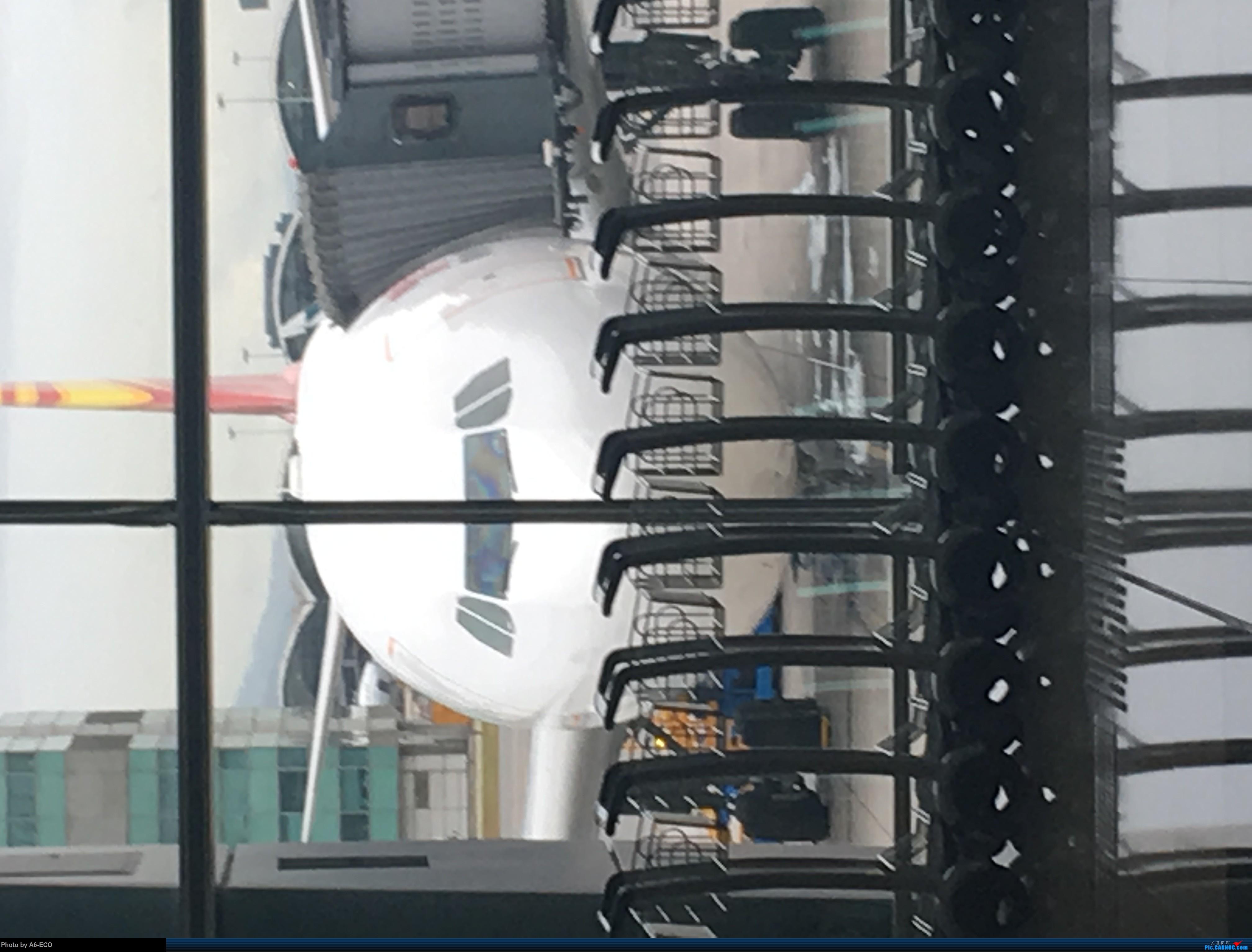 Re:[原创]海鲜航305航班+hxg拍机+香港推荐美食+回程海鲜航    中国香港国际机场