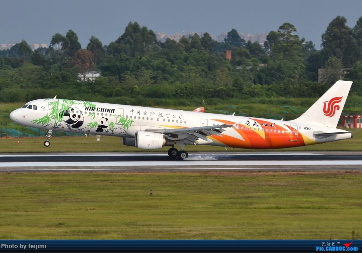 Re:[原创]【子安&拍机】8.26 成卢兹拍机记 AIRBUS A321-200 B-6365 中国成都双流国际机场