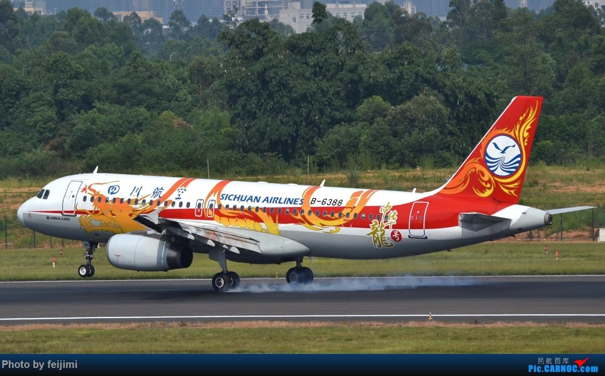 Re:[原创]【子安&拍机】8.26 成卢兹拍机记 AIRBUS A320-200 B-6388 中国成都双流国际机场