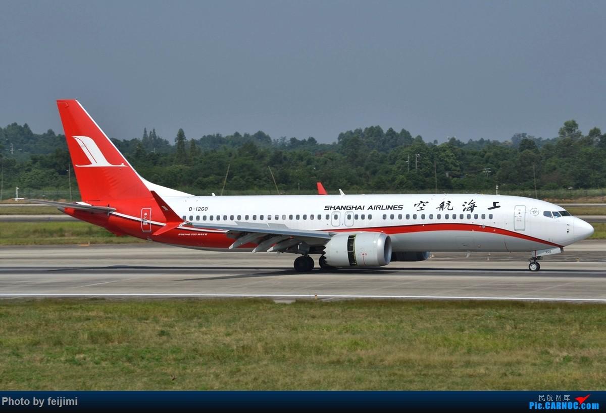 Re:[原创]【子安&拍机】8.26 成卢兹拍机记 BOEING 737MAX-8 B-1260 中国成都双流国际机场