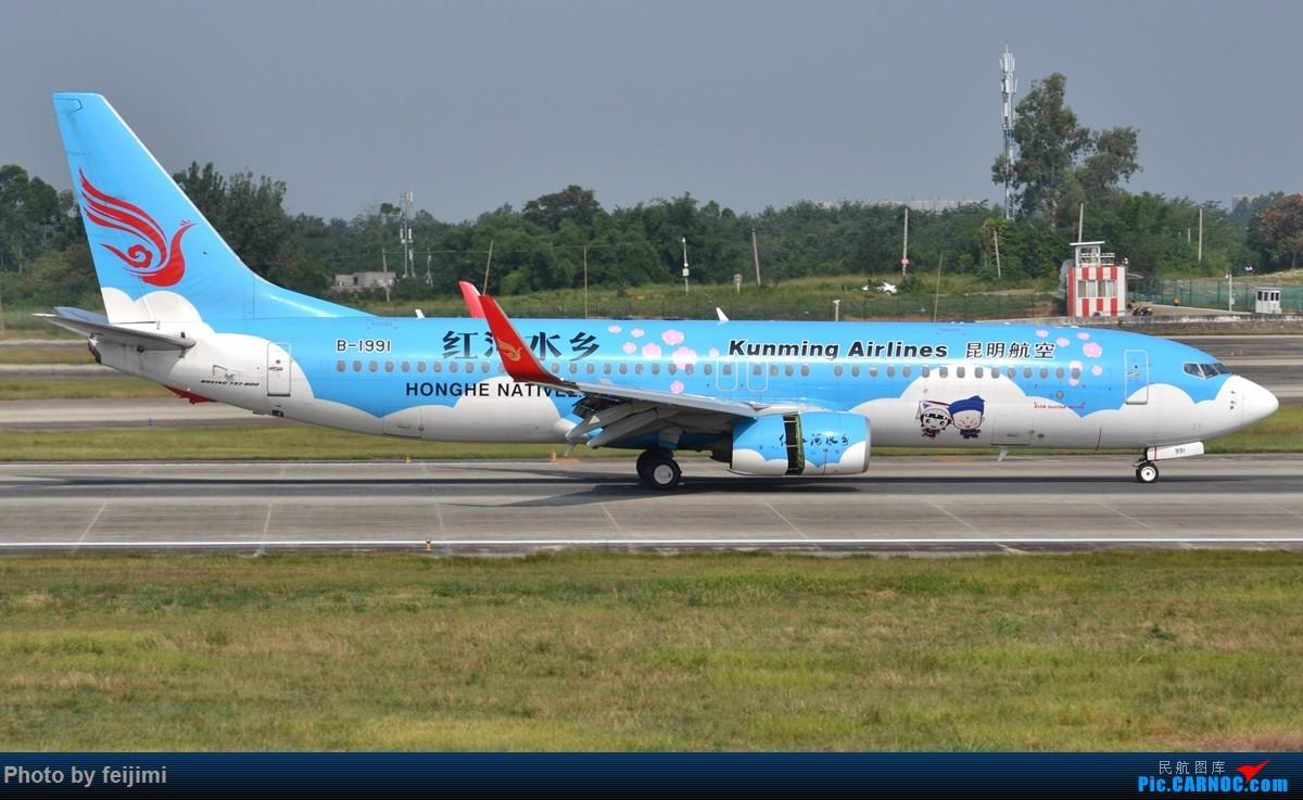 Re:[原创]【子安&拍机】8.26 成卢兹拍机记 BOEING 737-800 B-1991 中国成都双流国际机场