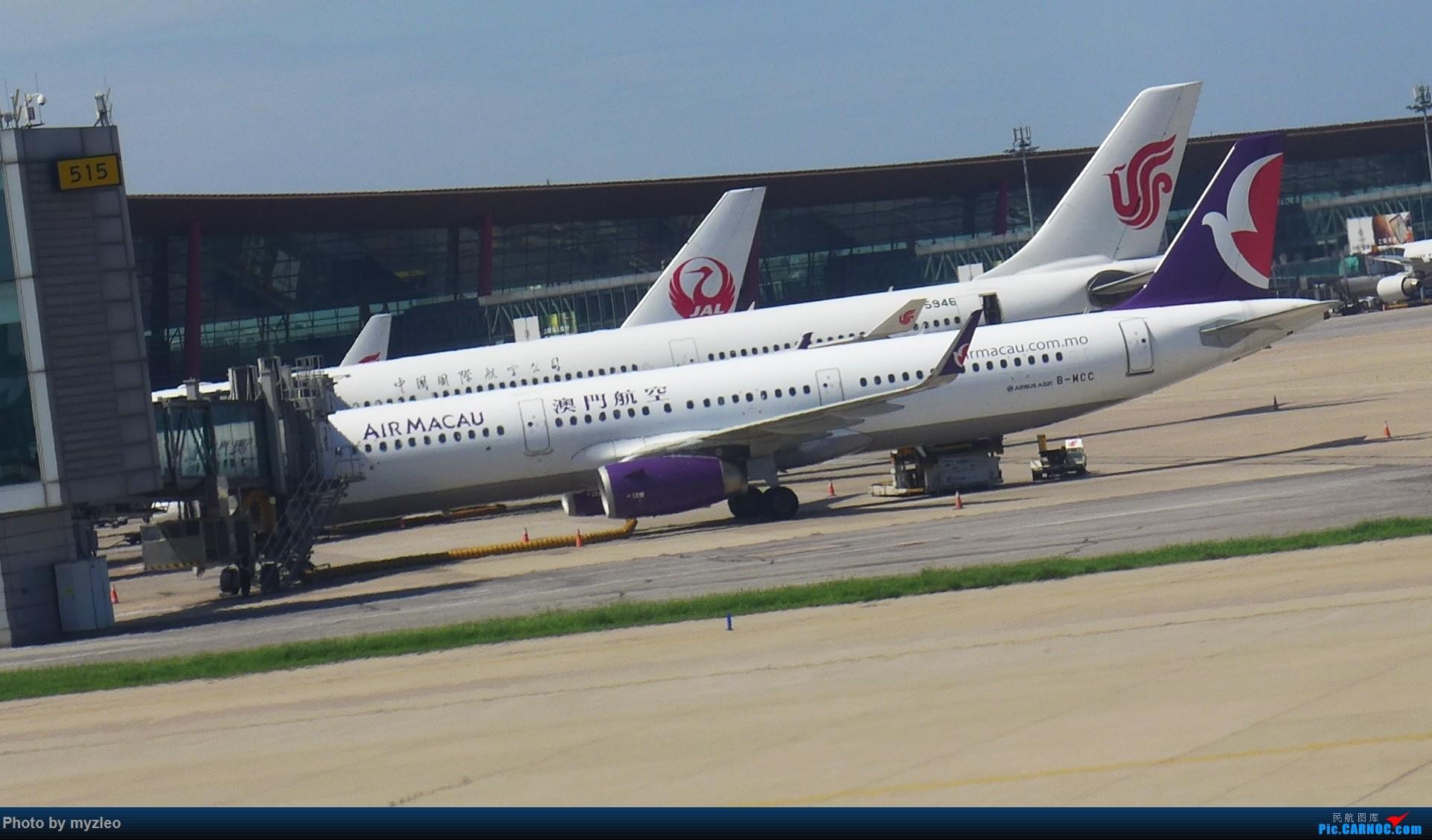 Re:[原创]【myzleo的游记3.1】三访帝都——记一次意外的惊喜,大鹅头初遇,第一次去中关村 AIRBUS A321-200 B-MCC 中国北京首都国际机场