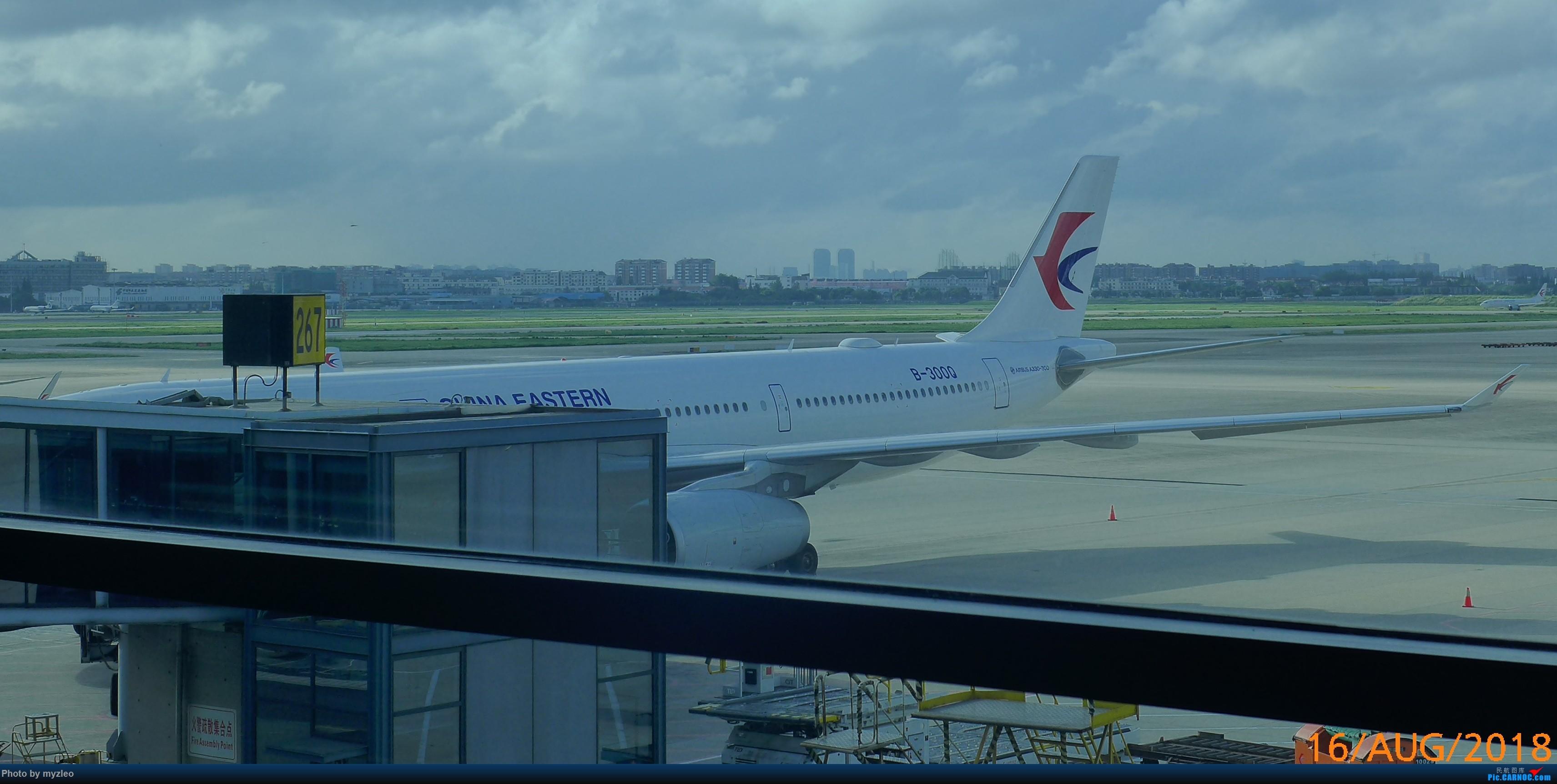 Re:[原创]【myzleo的游记3.1】三访帝都——记一次意外的惊喜,大鹅头初遇,第一次去中关村 AIRBUS A330-300 B-300Q 中国上海虹桥国际机场