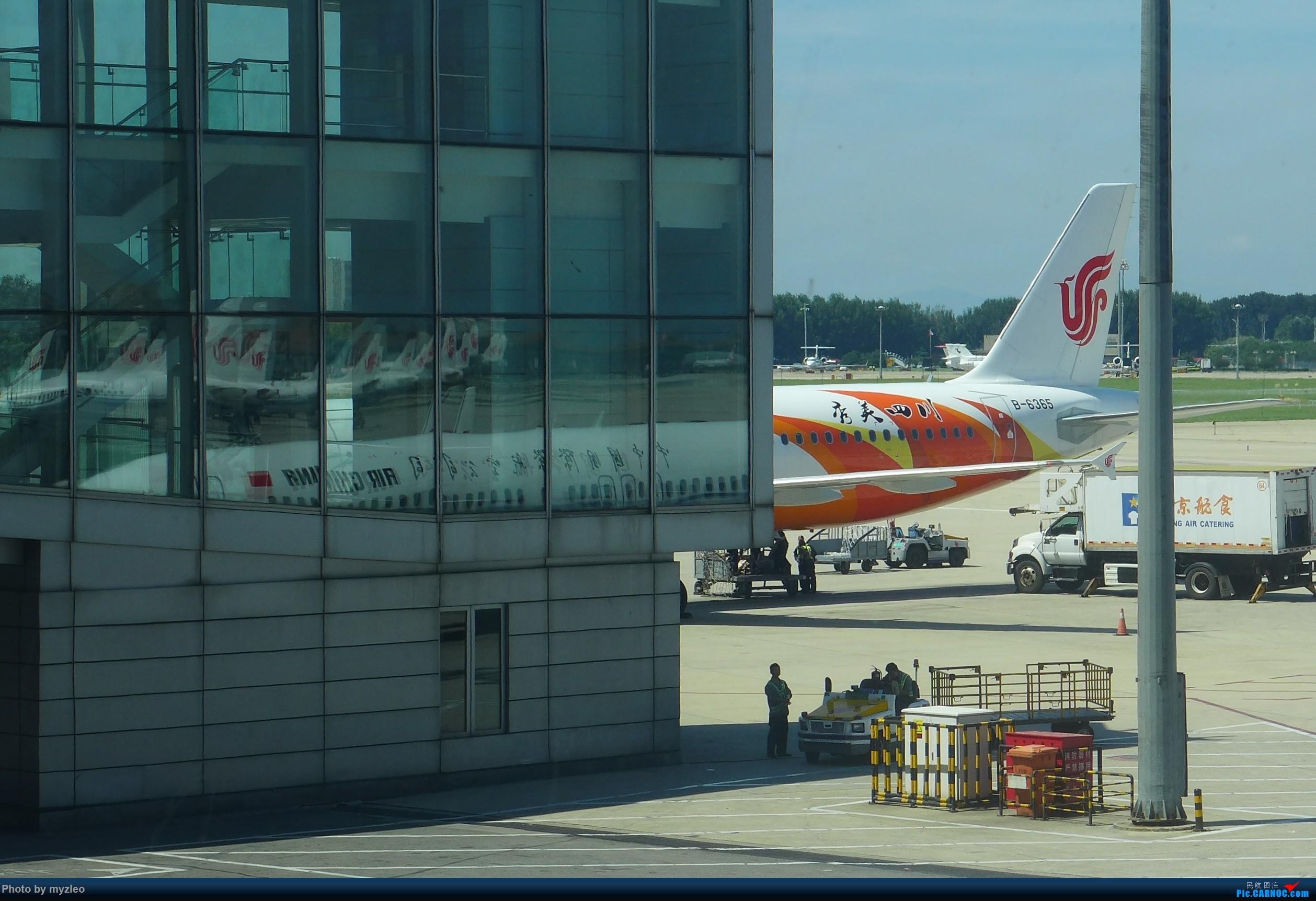 Re:[原创]【myzleo的游记3.1】三访帝都——记一次意外的惊喜,大鹅头初遇,第一次去中关村 AIRBUS A321-200 B-6365 中国北京首都国际机场