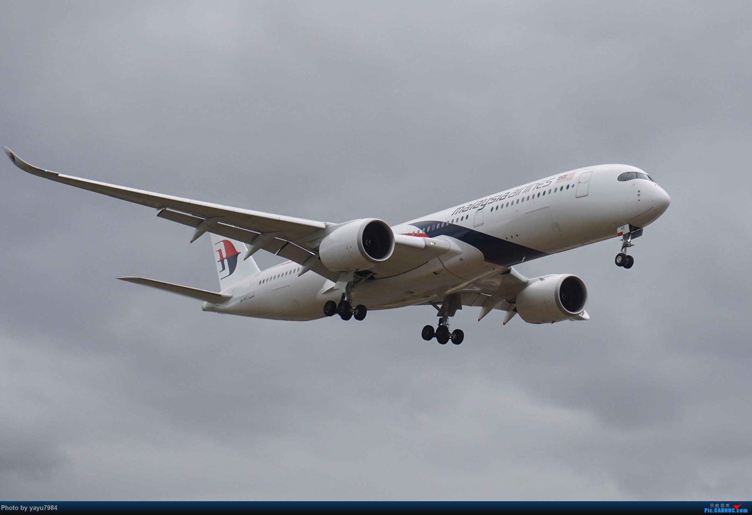 [原创][SYD] 解锁几个没拍过的货:马航A359,RR引擎的袋鼠744... AIRBUS A350-900 9M-MAE 澳大利亚悉尼金斯福德・史密斯机场