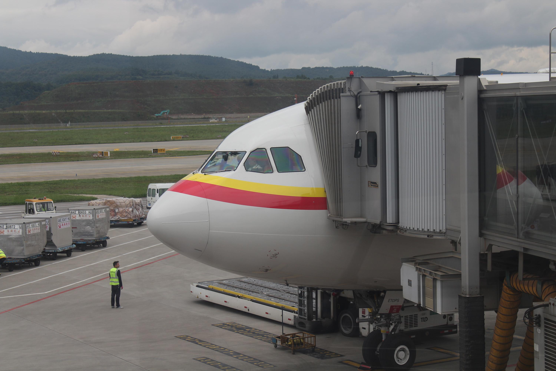 [原创]360天日夜谋划精心筹备之为纪念老爸光荣退休的全家云南行 AIRBUS A330-200 B-8659 中国天津滨海国际机场