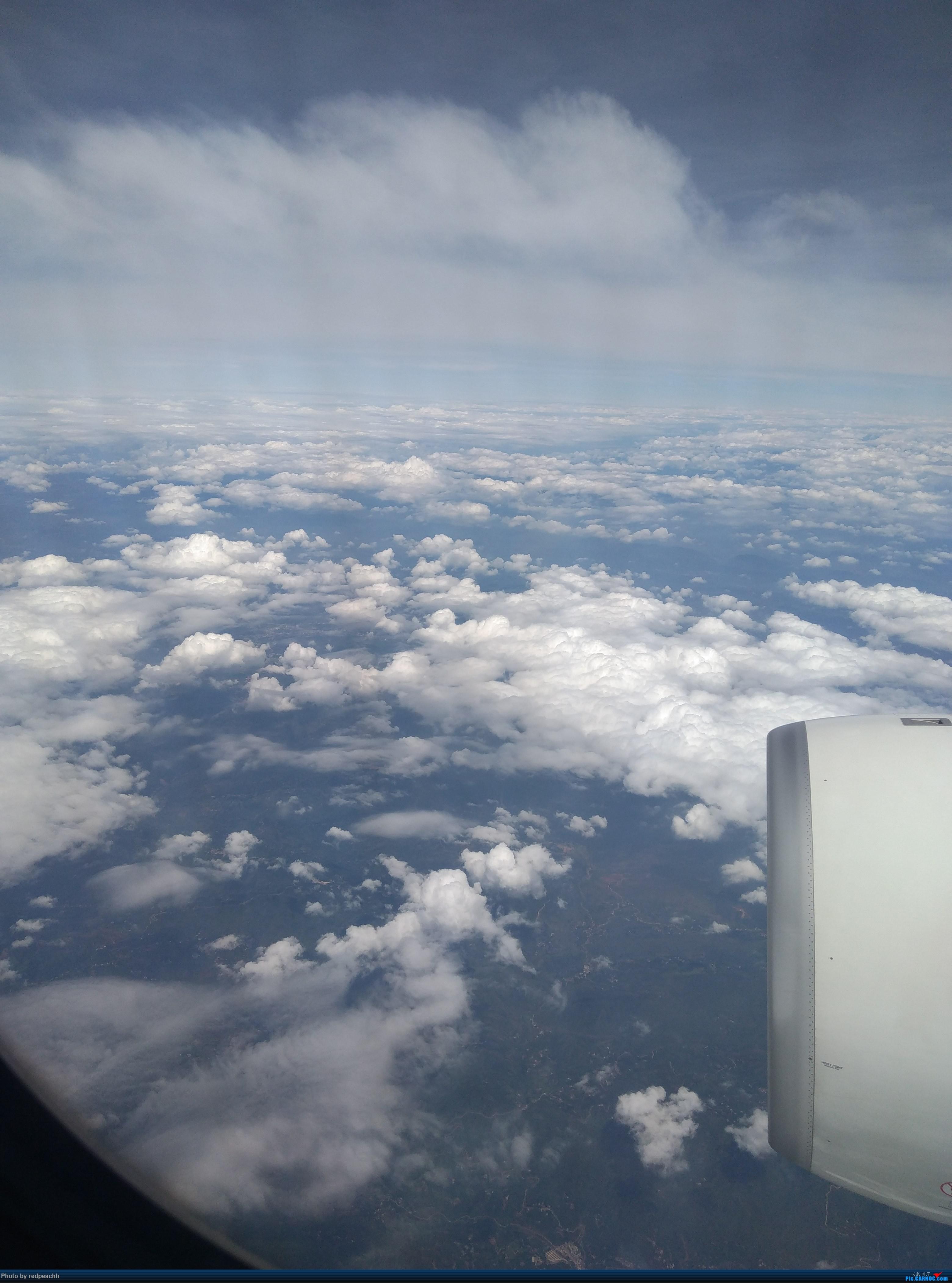 Re:[原创]360天日夜谋划精心筹备之为纪念老爸光荣退休的全家云南行 AIRBUS A330-200 B-8659 中国天津滨海国际机场