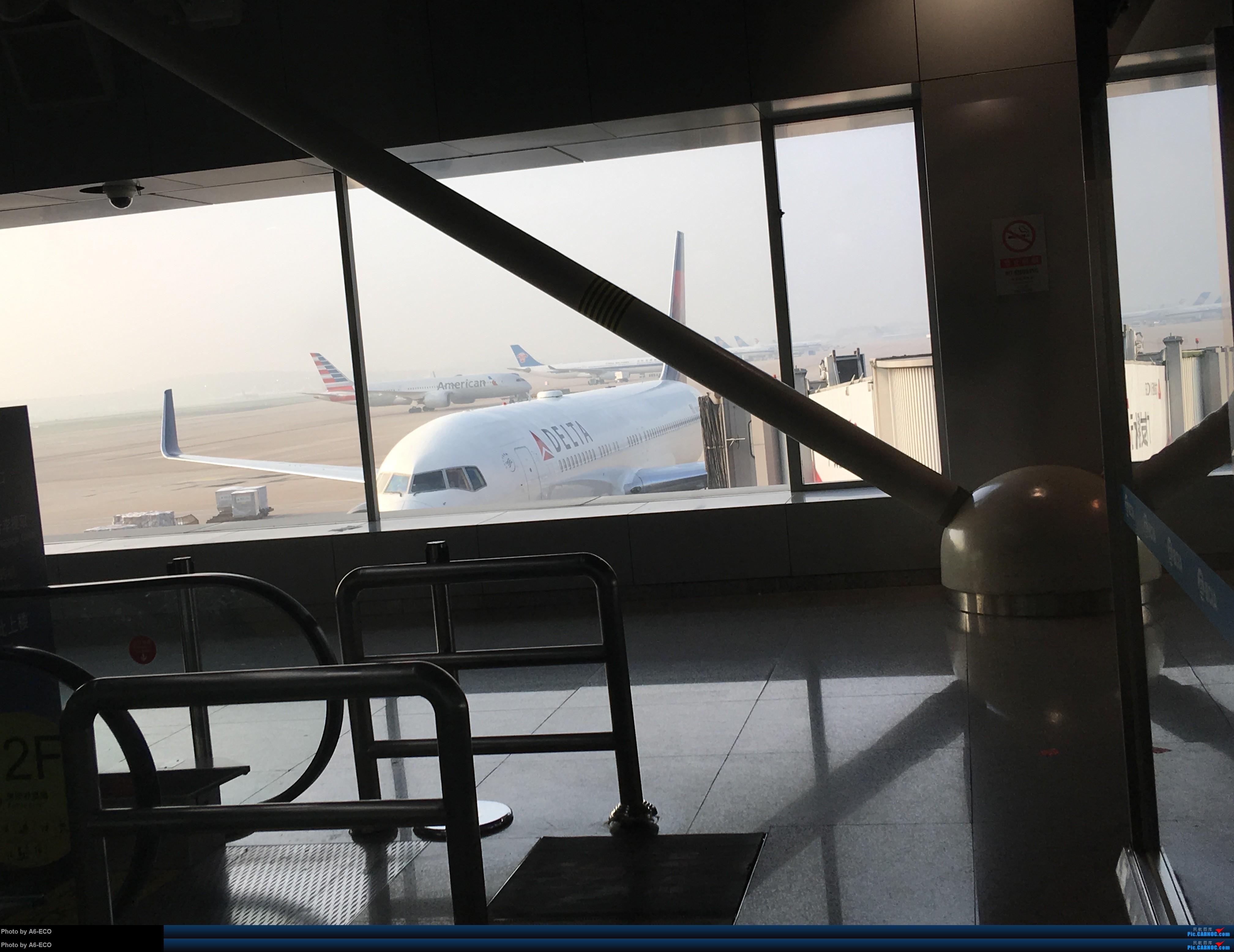 Re:[原创]一张图:首都机场又多了一家外航:法国蓝鹰航空 767 忘了 中国北京首都国际机场
