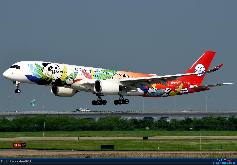 第一次来深,下一次不知是什么时候了。 AIRBUS A350-900 B-301D 中国深圳宝安国际机场