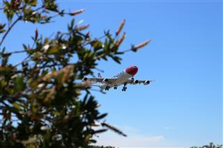 瑞士雪絨花航空5APU首飛悉尼