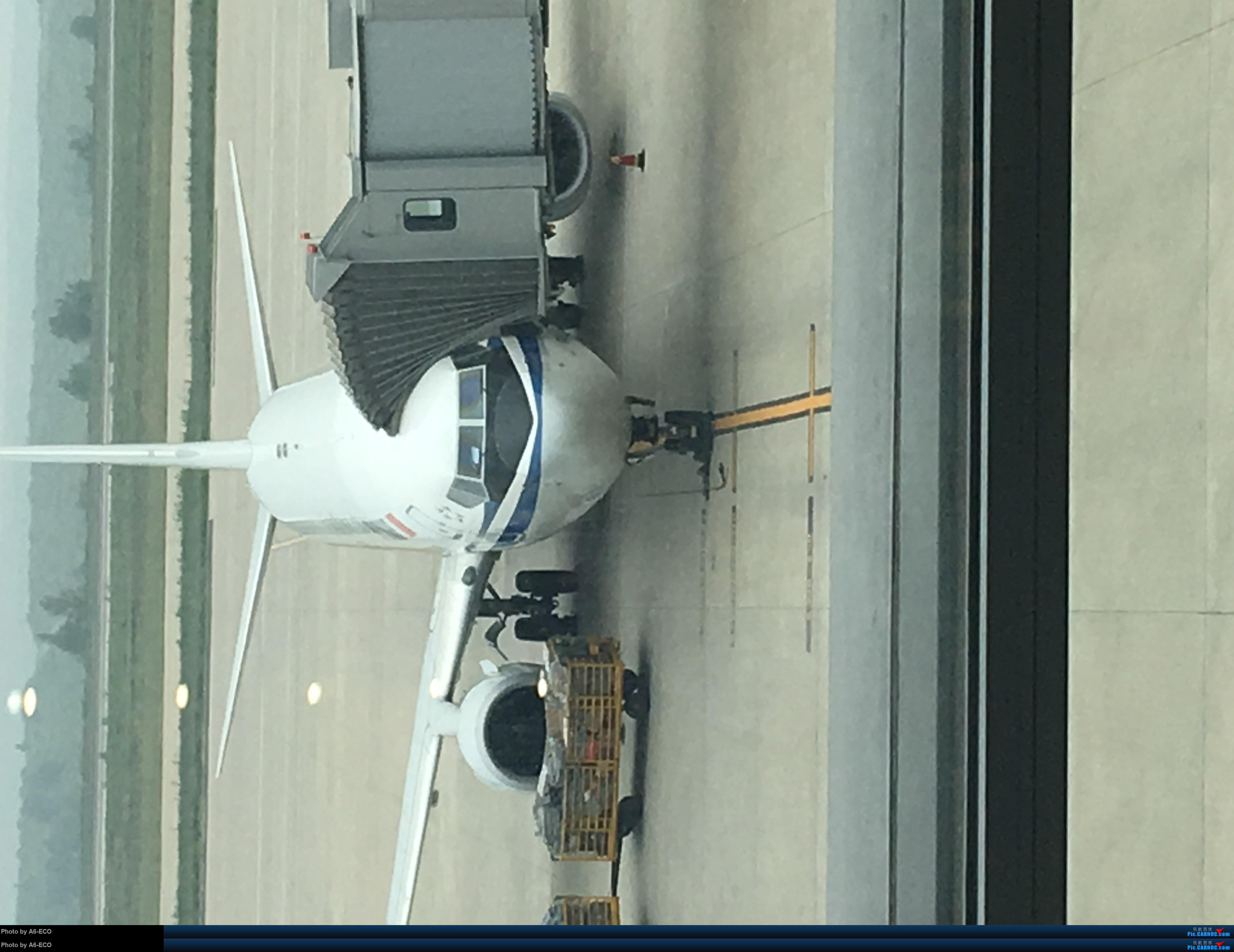 Re:[原创][霸都打机队 空中之客发布]aiolia7456大佬尽然没有参加当代拍机活动 BOEING 737-800 B-1959 中国鄂尔多斯伊金霍洛机场