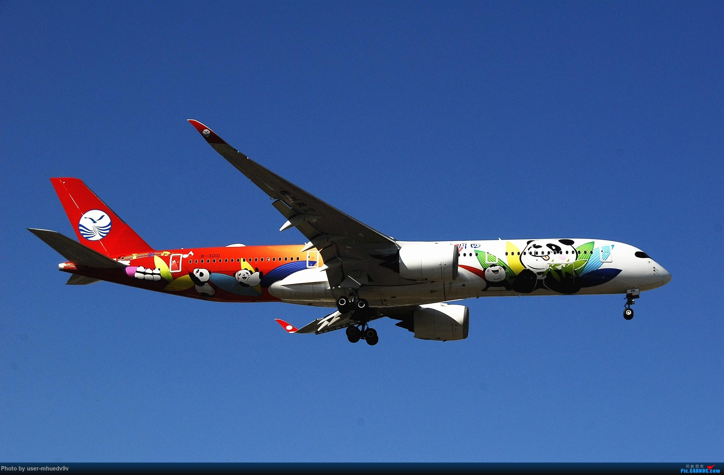 Re:[原创]十一难得北京妖天,萌新ZBAA拍机一组干货,大佬勿喷,马上月考更要放飞自我。。。 AIRBUS A350-900 B-301D 中国北京首都国际机场