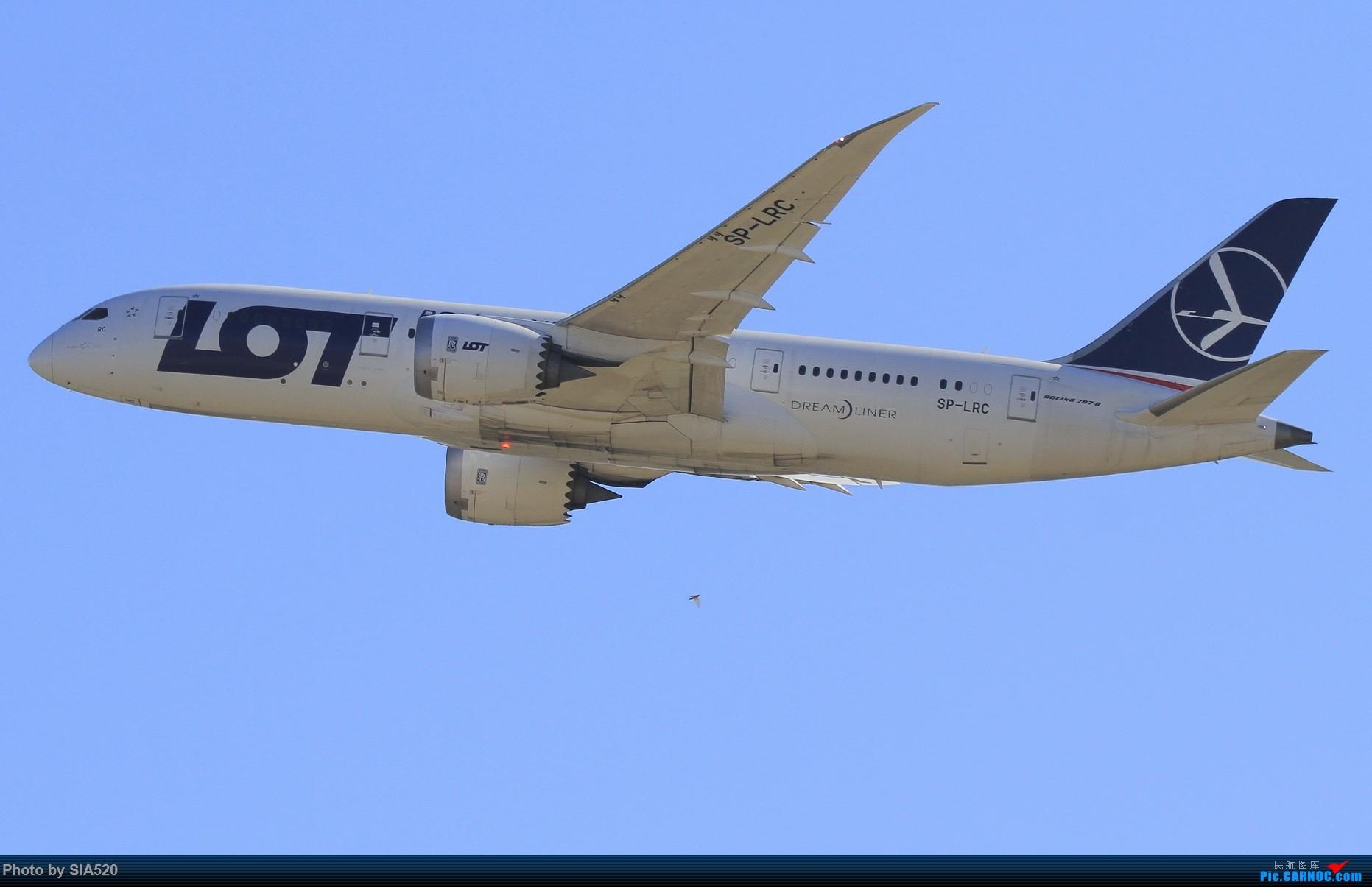 Re:[原创]10-1首都机场随拍,帝都蓝加好看的那一些…… BOEING 787-8 SP-LRC 中国北京首都国际机场