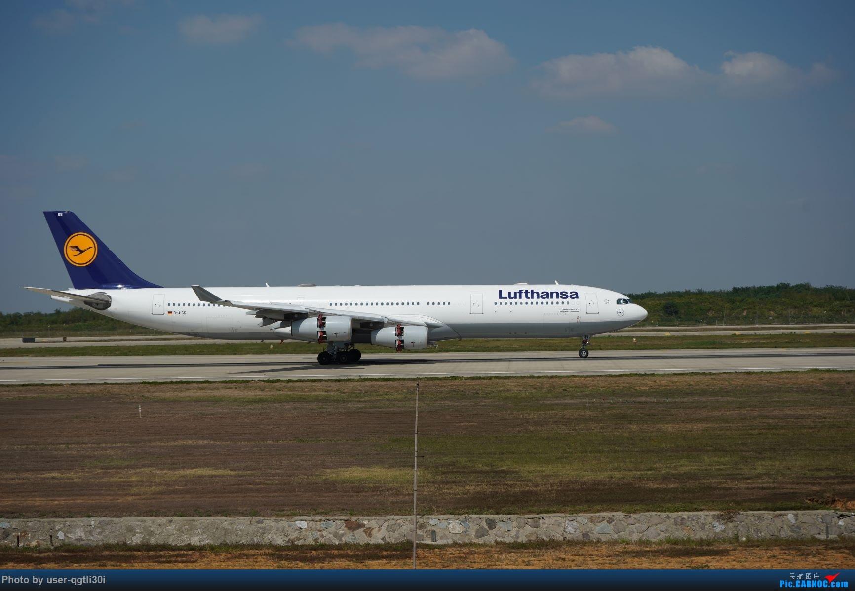 Re:[原创]NKG的秋天 AIRBUS A340-300 D-AIGS 中国南京禄口国际机场