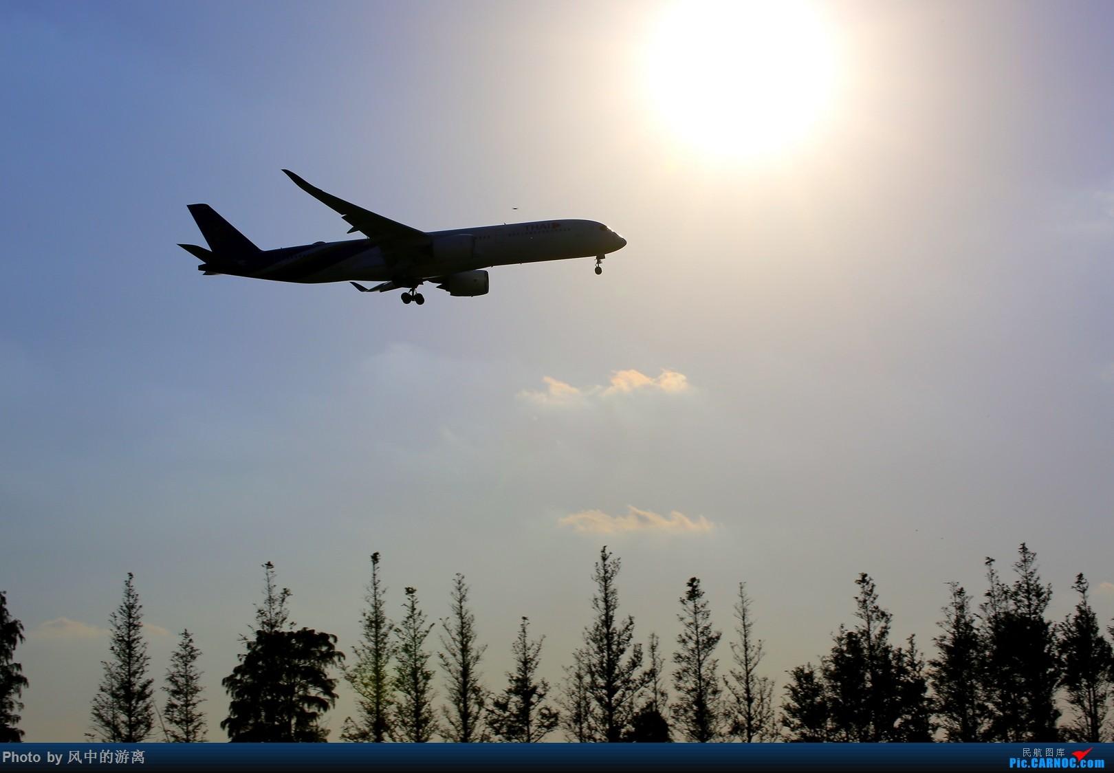 Re:[原创]转季转风向,觅PVG南端 AIRBUS A350-900 HS-THF