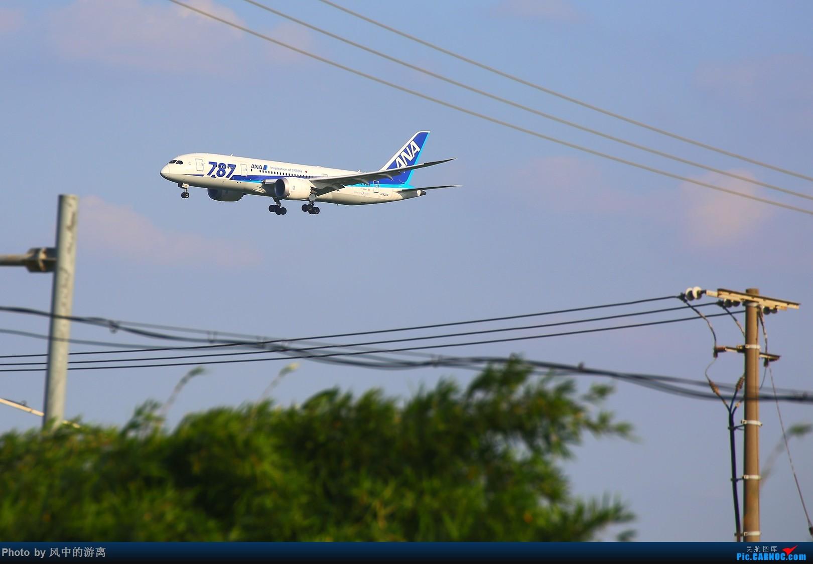 Re:[原创]转季转风向,觅PVG南端 BOEING 787-8 JA820A 中国上海浦东国际机场