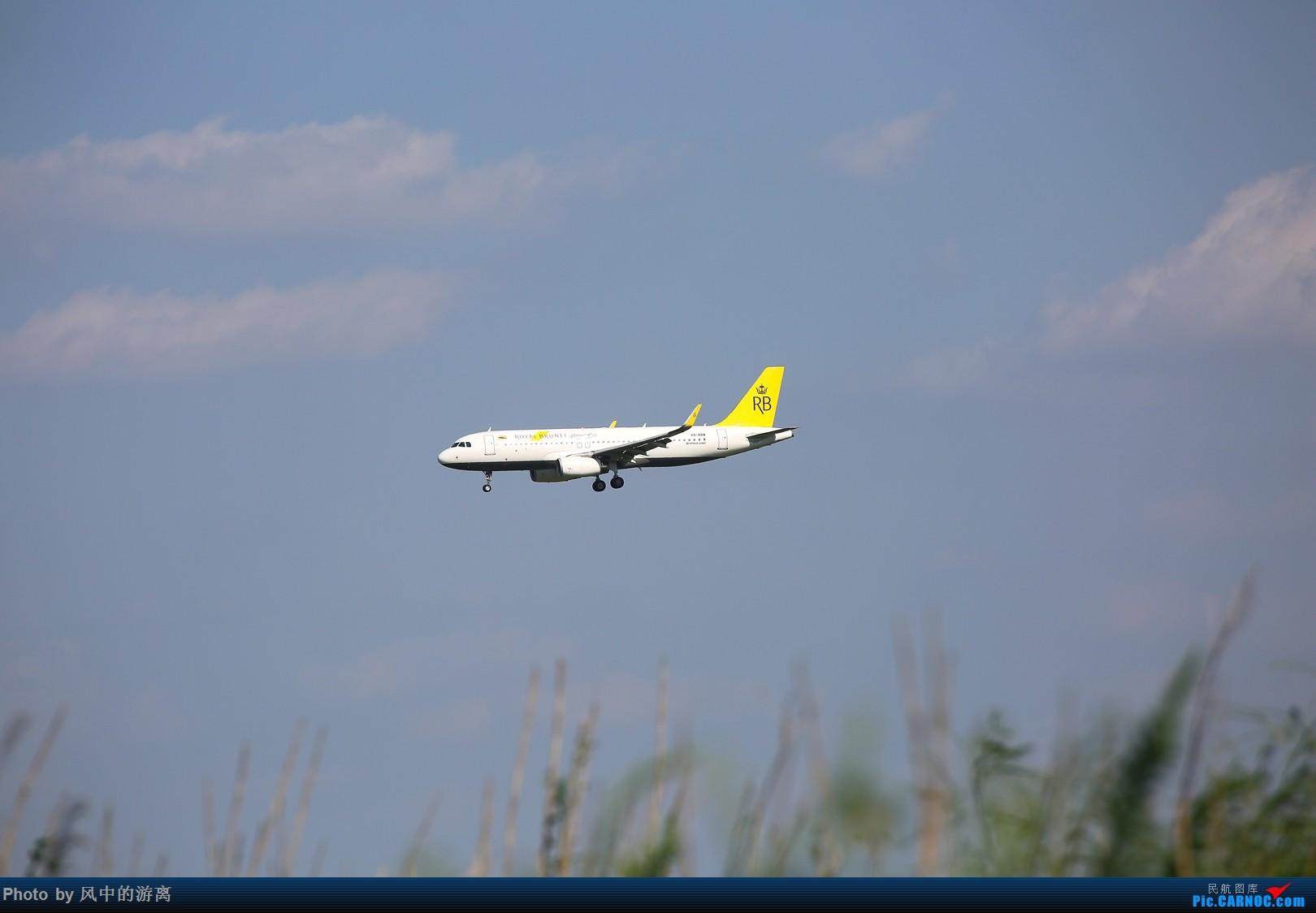 Re:[原创]转季转风向,觅PVG南端 AIRBUS A320 V8-RBW 中国上海浦东国际机场