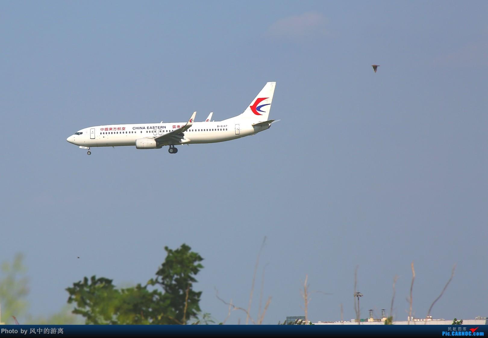 Re:[原创]转季转风向,觅PVG南端 BOEING 737-800 B-6147 中国上海浦东国际机场