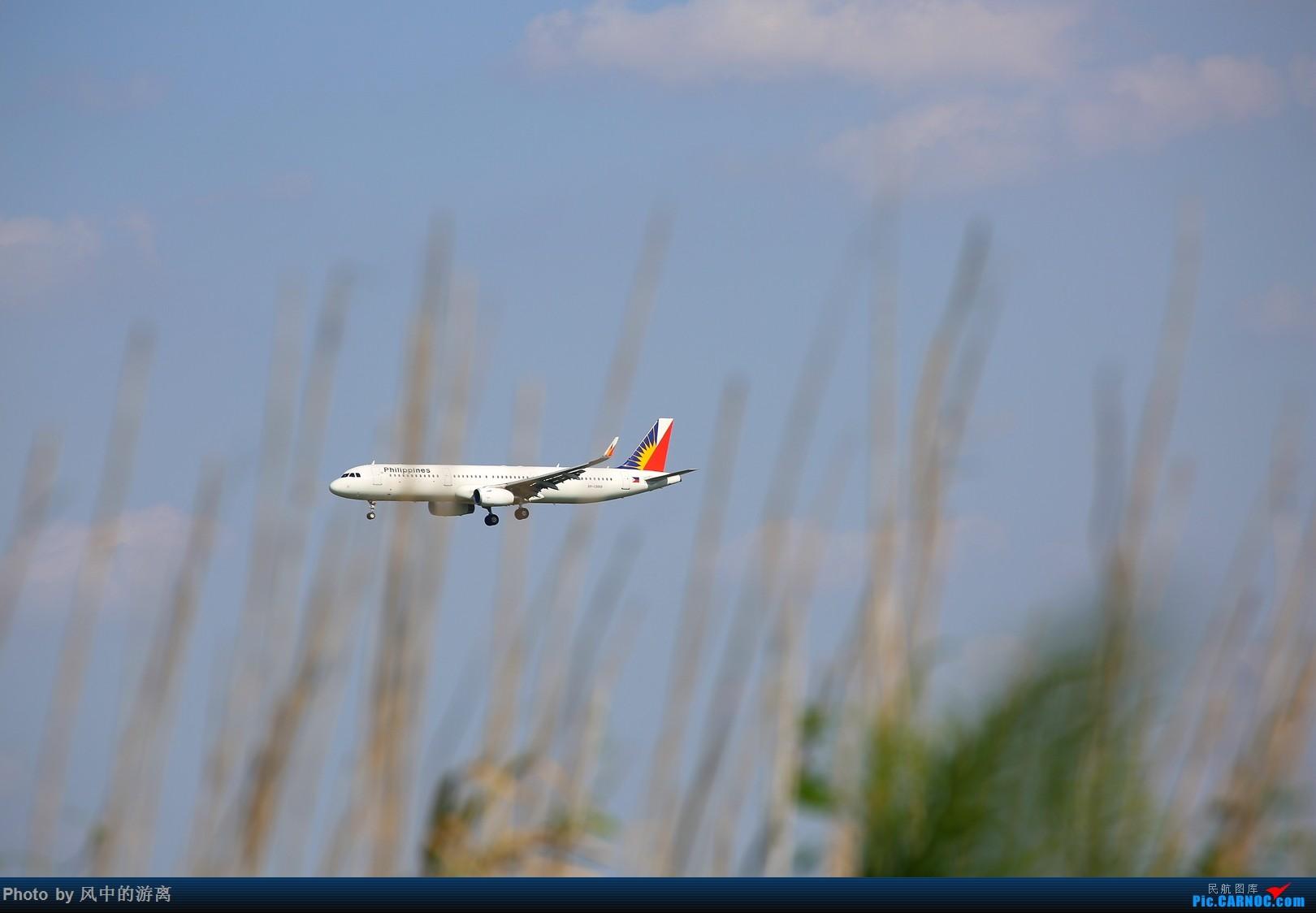 Re:[原创]转季转风向,觅PVG南端 AIRBUS A321 RP-C9919 中国上海浦东国际机场