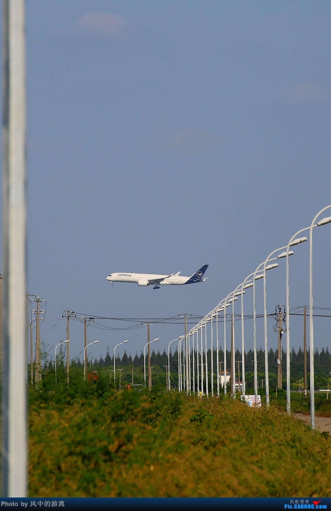 Re:[原创]转季转风向,觅PVG南端 AIRBUS A350-900