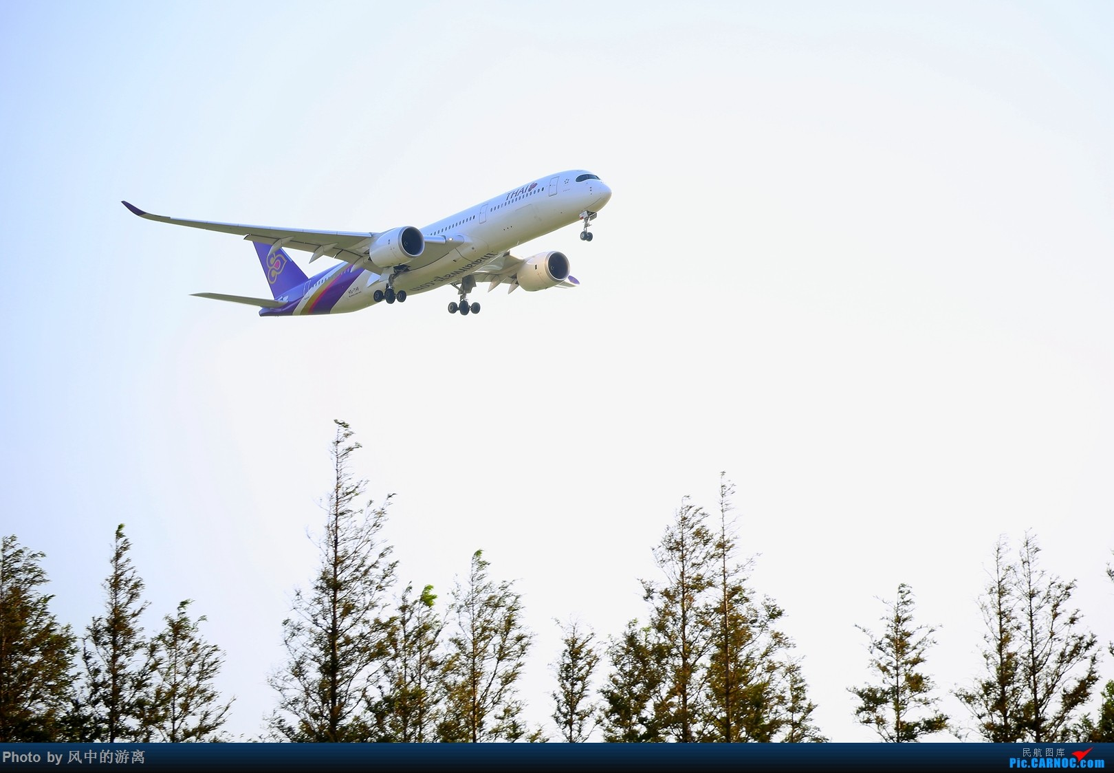 Re:[原创]转季转风向,觅PVG南端 AIRBUS A350-900 HS-THF 中国上海浦东国际机场