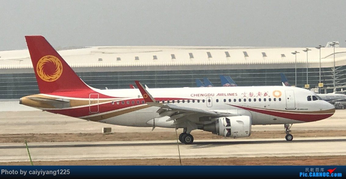 Re:[原创]武汉国庆拍机ps:出门忘带相机 拿手机拍的烂货请见谅! AIRBUS A319-100 B-8237 武汉天河国际机场