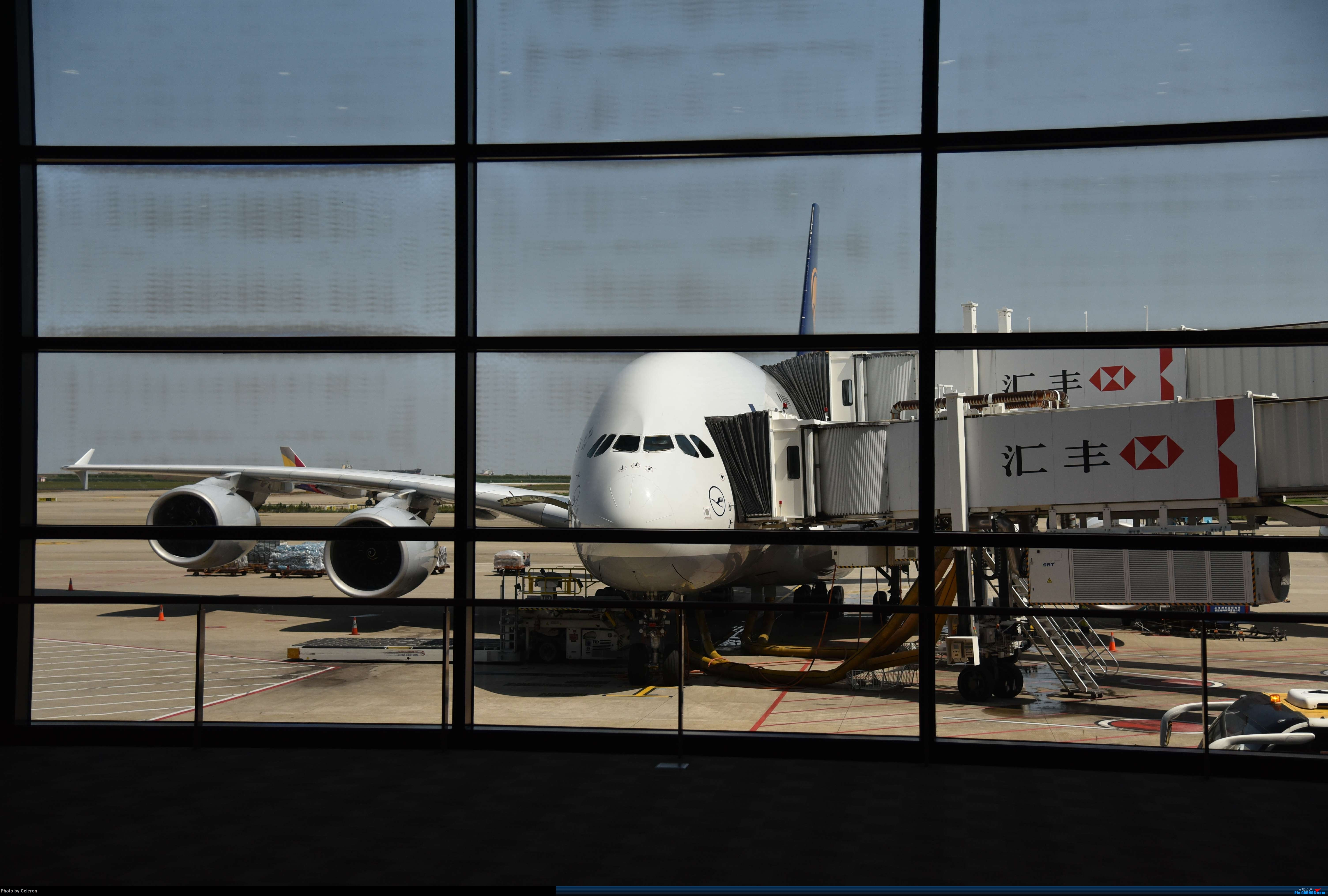 Re:[原创]中秋节上海之行返程PVG-XIY AIRBUS A380 D-AIMI 中国上海浦东国际机场