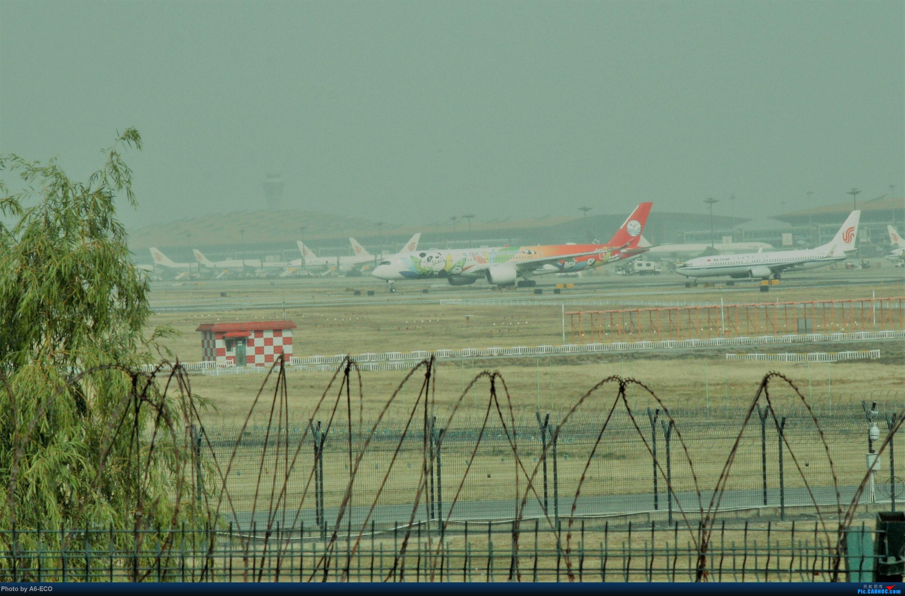 Re:[原创]【Siriの拍机】再次出现PEK AIRBUS A350-900 B-301D 中国北京首都国际机场