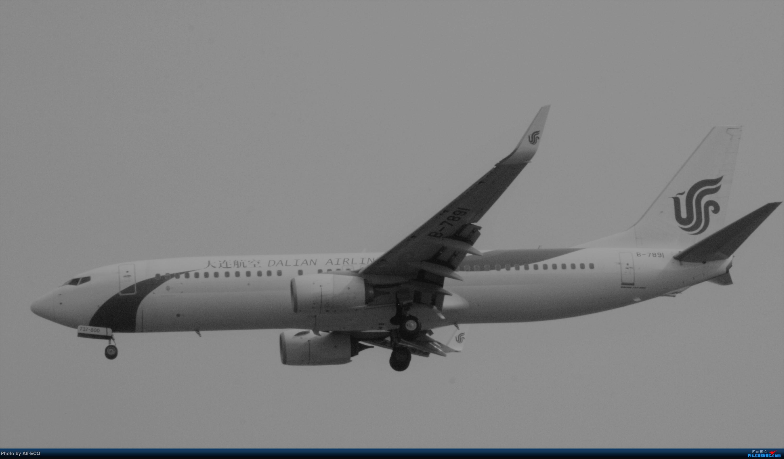 Re:[原创]【Siriの拍机】再次出现PEK BOEING 737-800 B-7891 中国北京首都国际机场