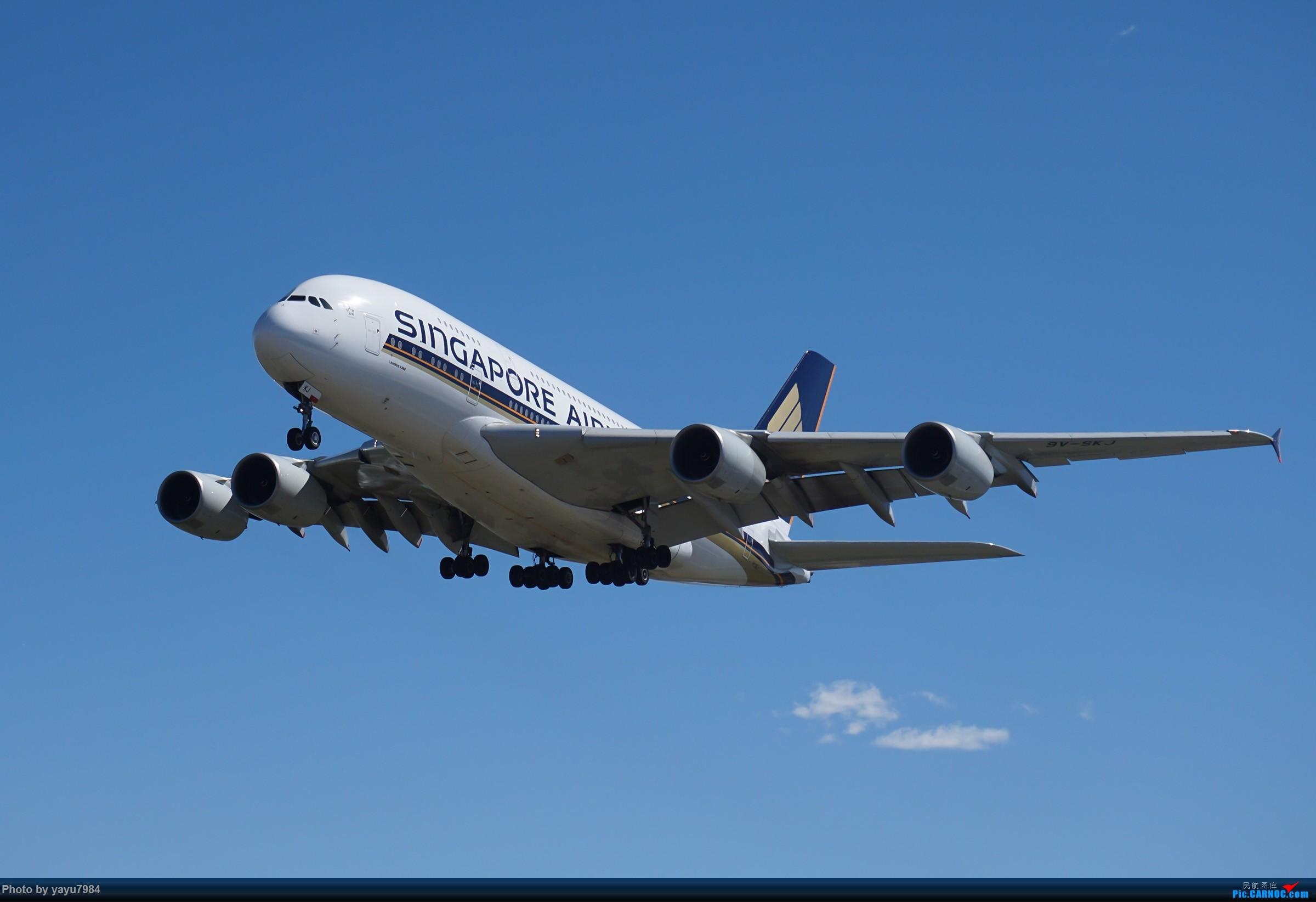 [原创][SYD] 东航天合332,雪绒花343,华航蓝鹊,以及其他日常货 AIRBUS A380-800 9V-SKJ 澳大利亚悉尼金斯福德·史密斯机场