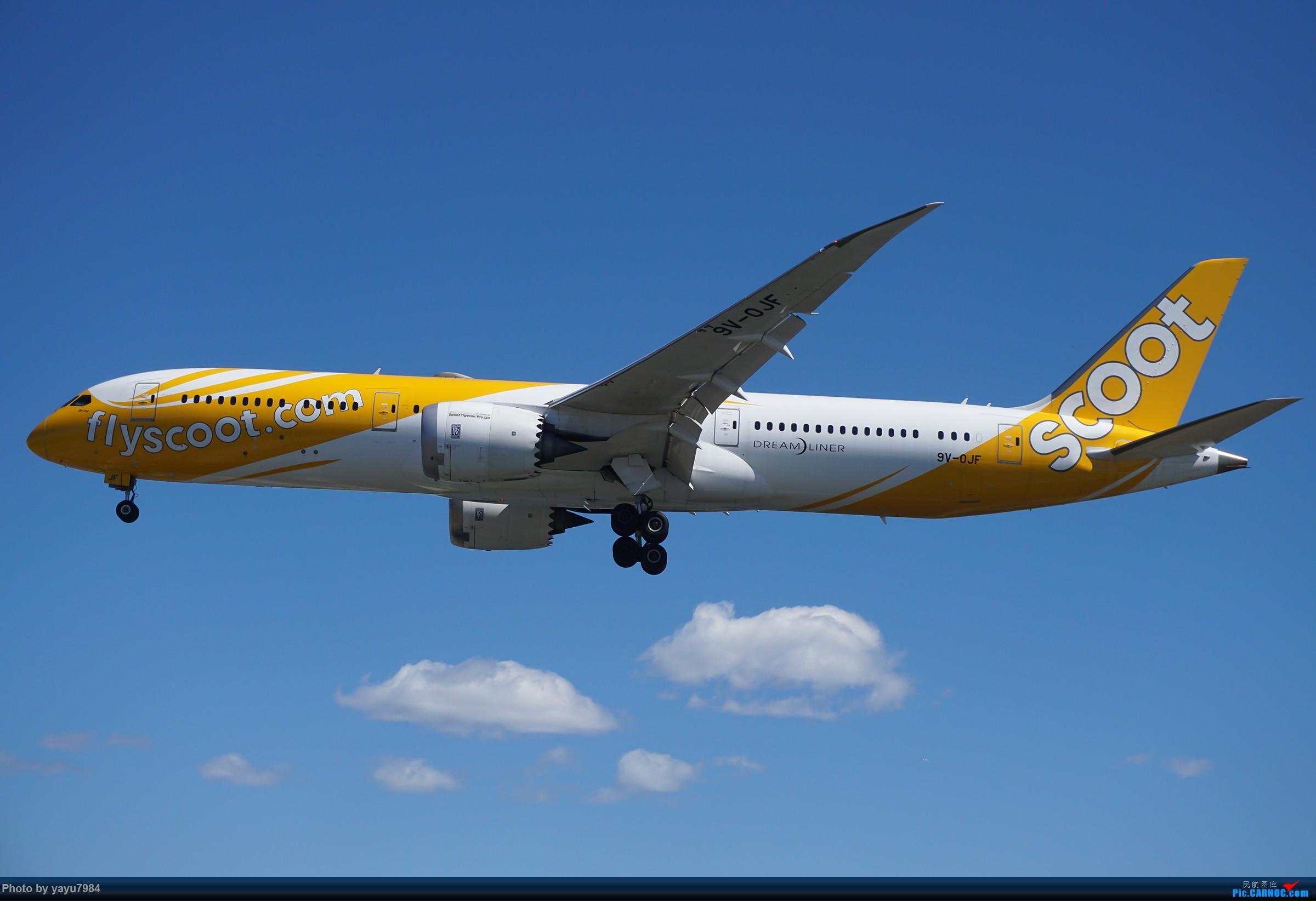 Re:[原创][SYD] 东航天合332,雪绒花343,华航蓝鹊,以及其他日常货 BOEING 787-9 9V-OJF 澳大利亚悉尼金斯福德·史密斯机场