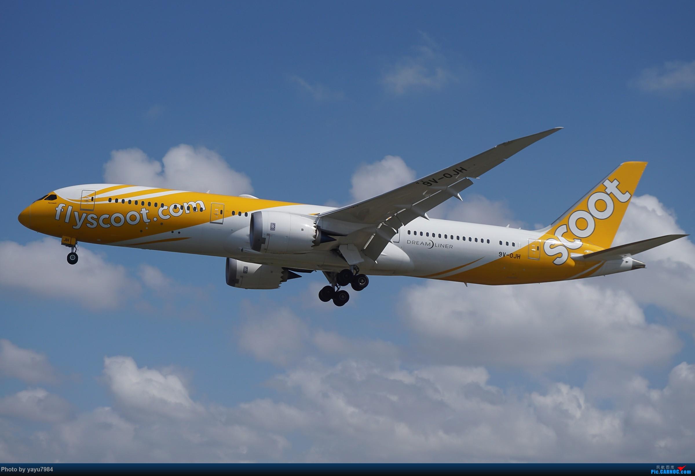 Re:[SYD] 东航天合332,雪绒花343,华航蓝鹊,以及其他日常货 BOEING 787-9 9V-OJH 澳大利亚悉尼金斯福德·史密斯机场