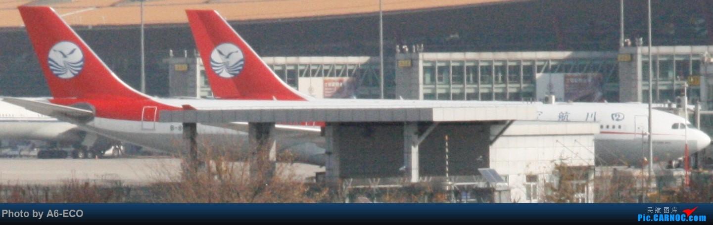 Re:[原创]大家双十一都du'o了什么?我在pek拍机 AIRBUS A330-300 B-8690 中国北京首都国际机场
