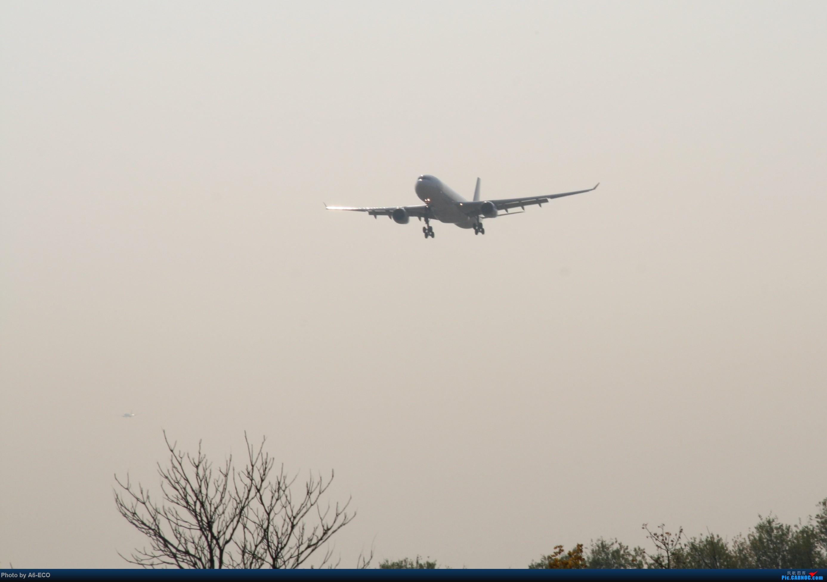 Re:[原创]大家双十一都du'o了什么?我在pek拍机 AIRBUS A330-300 B-302E 中国北京首都国际机场