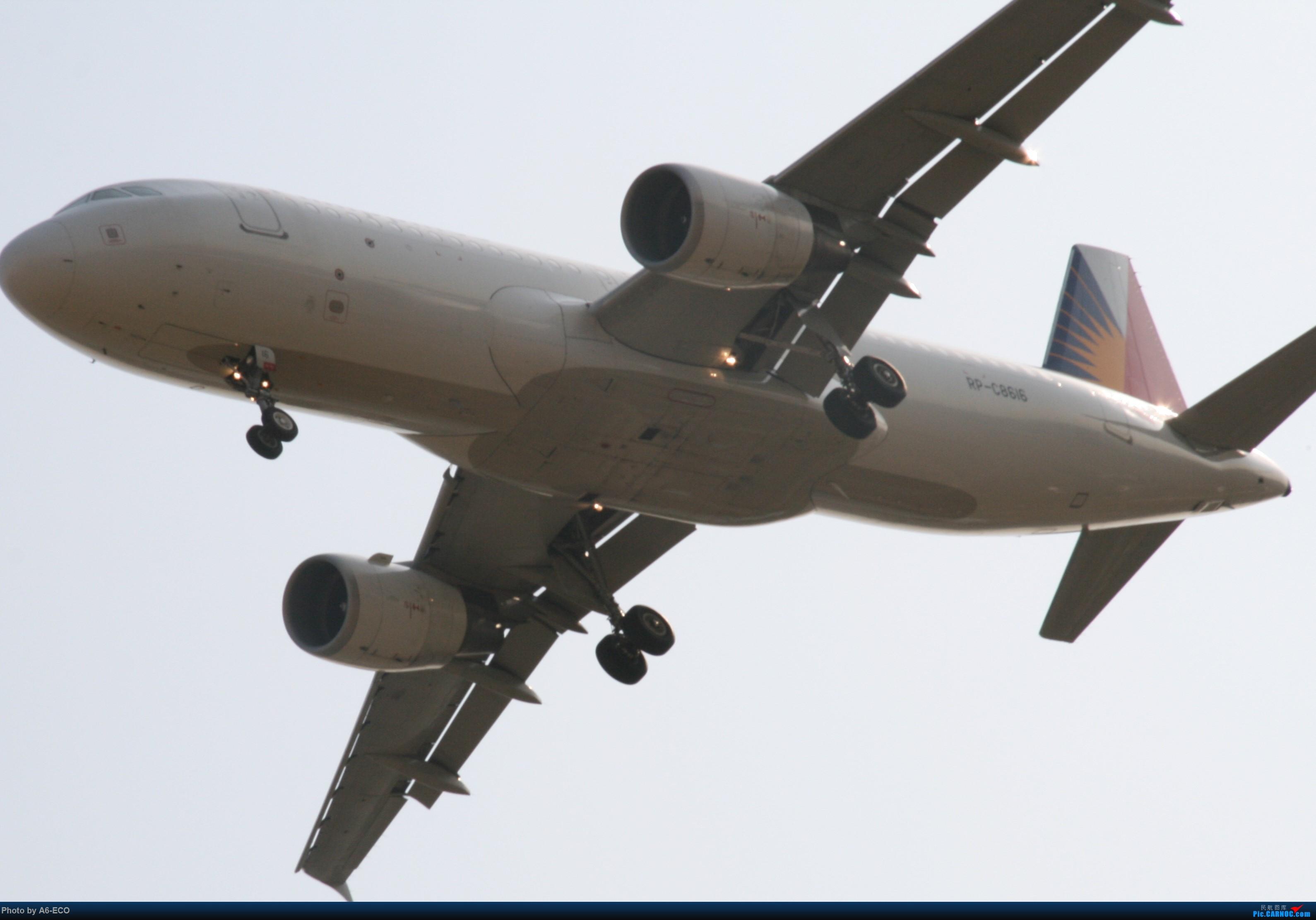 Re:[原创]大家双十一都du'o了什么?我在pek拍机 AIRBUS A320-200 RP-C8616 中国北京首都国际机场