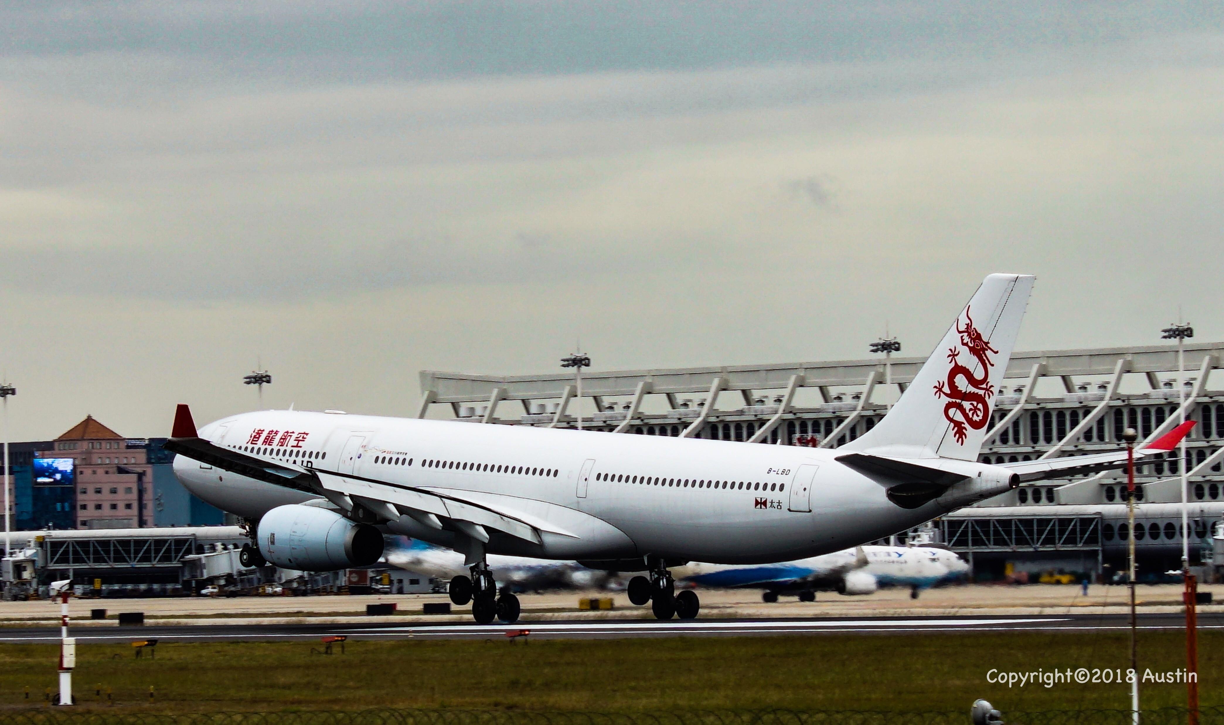 [原创][XMN]接熊猫啦~part 1 AIRBUS A330-300 B-LBD 中国厦门高崎国际机场