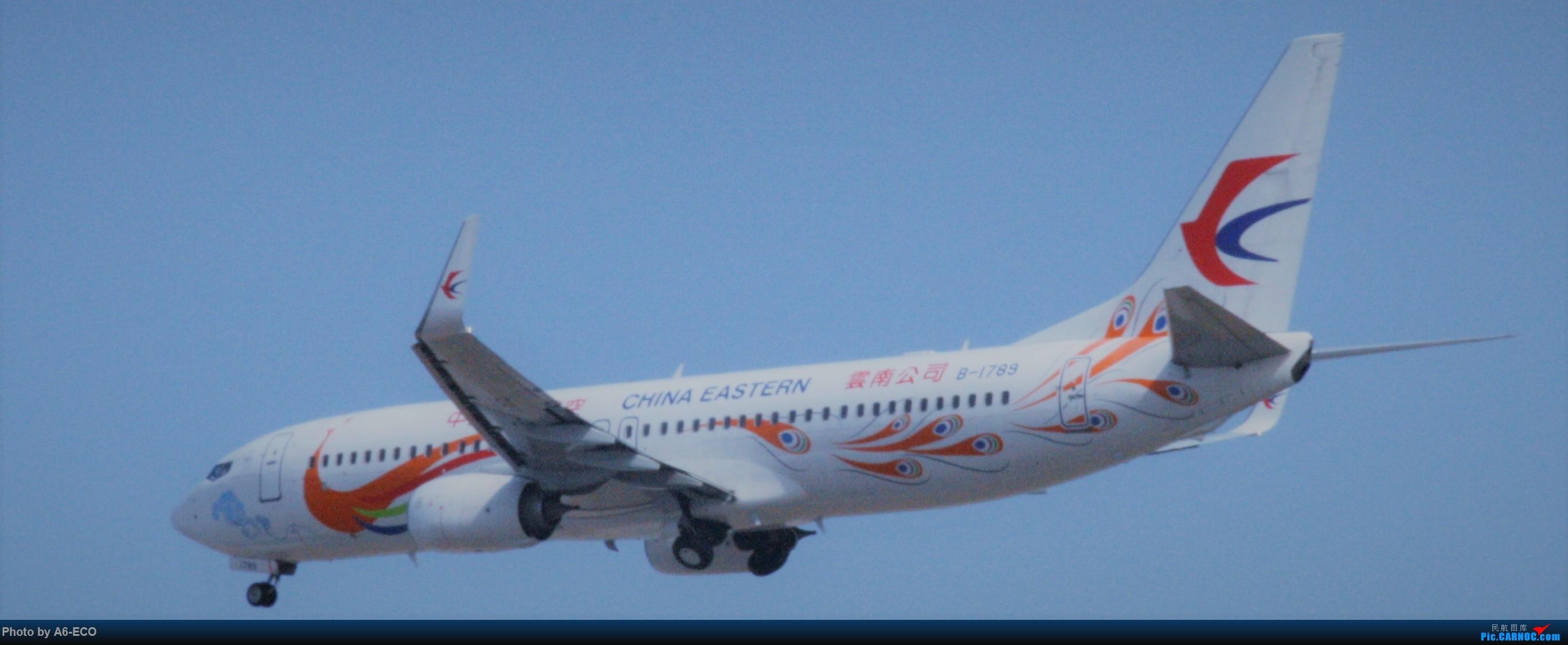 Re:[原创]今天运气极好,云南孔雀,B-1070,2个菜航邮戳,泡菜航彩绘,东航邮戳...... BOEING 737-800 B-1789 中国北京首都国际机场