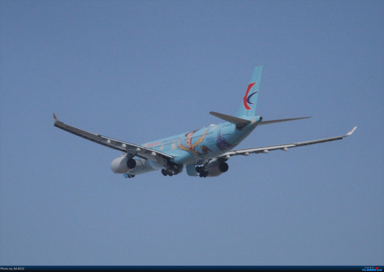 Re:[原创]今天运气极好,云南孔雀,B-1070,2个菜航邮戳,泡菜航彩绘,东航邮戳...... AIRBUS A330-300 B-5976 中国北京首都国际机场