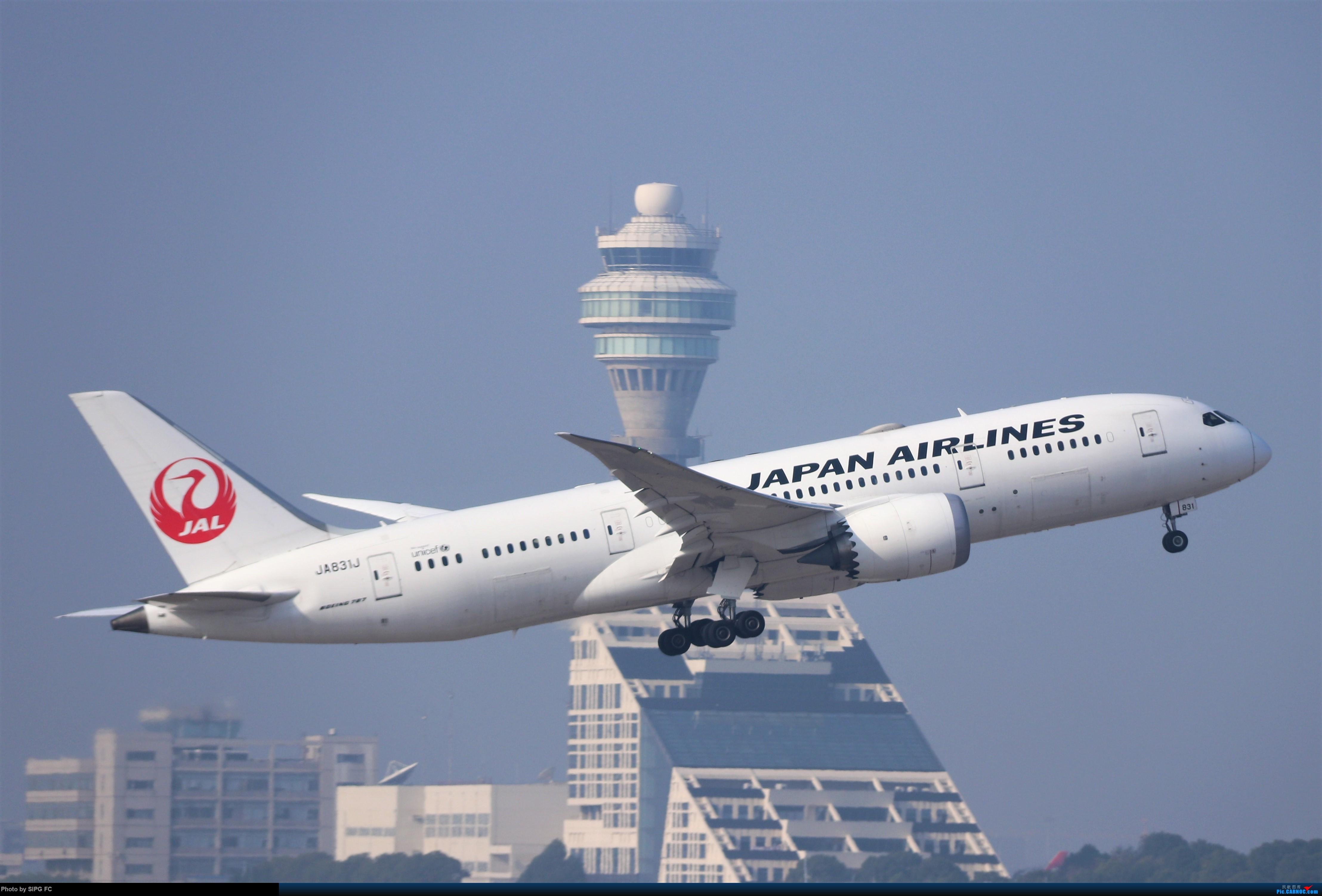Re:[原创]清晨浓雾散去后繁忙的浦东机场 BOEING 787 JA-831J 中国上海浦东国际机场