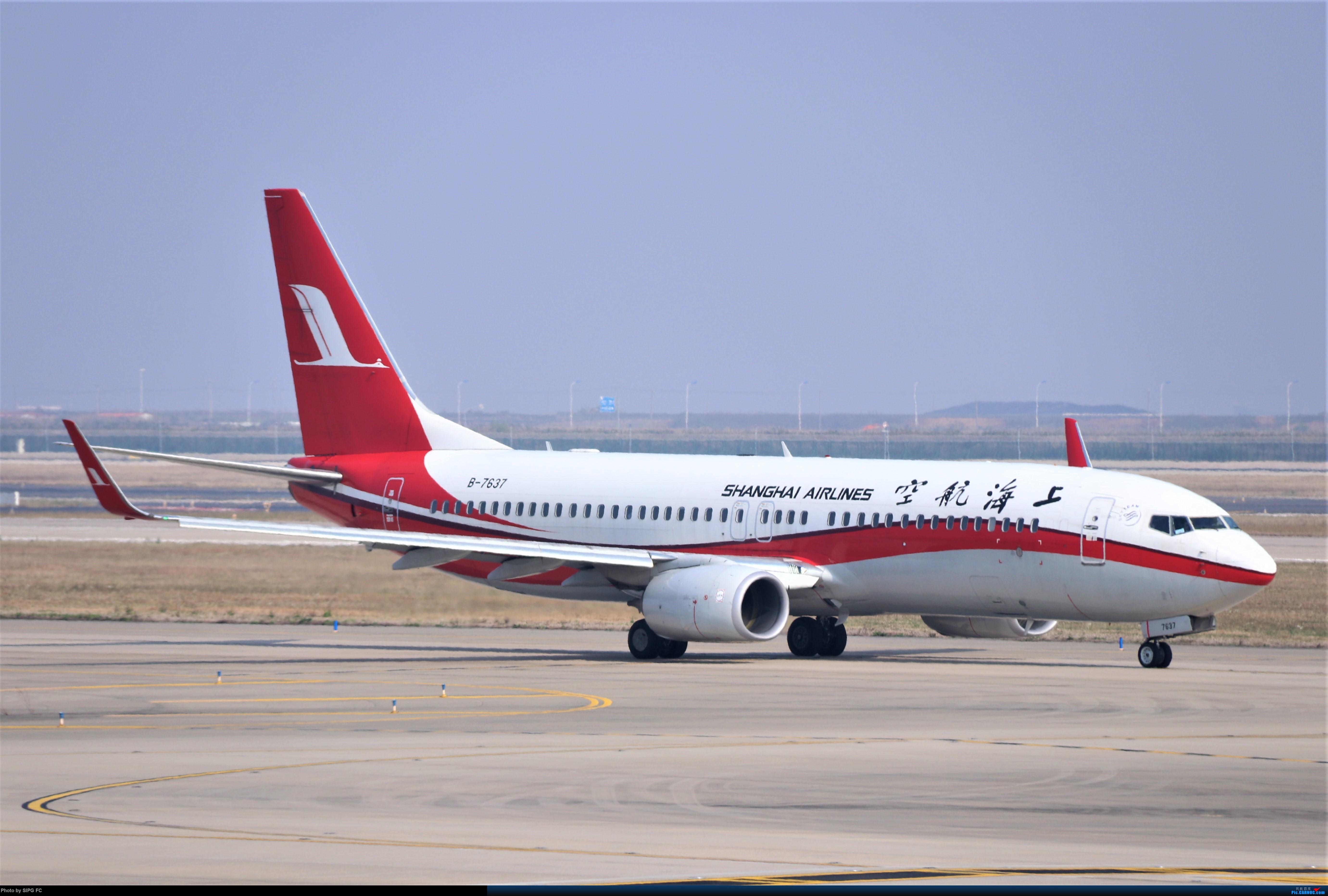 Re:[原创]清晨浓雾散去后繁忙的浦东机场 BOEING 737-800 B-7637 中国上海浦东国际机场