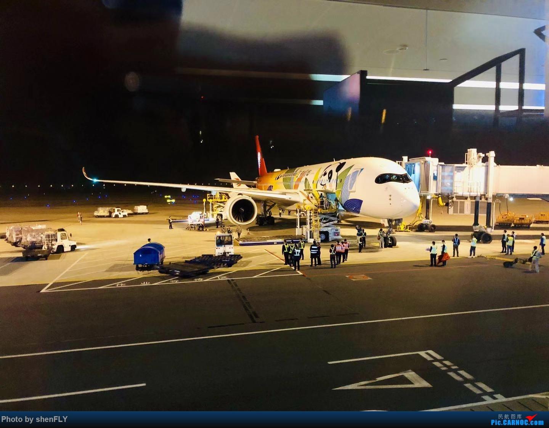 Re:[原创]川航首架A350 B-301D飞天熊猫成都首航南京飞行游记 AIRBUS A350-900 B-301D 中国南京禄口国际机场