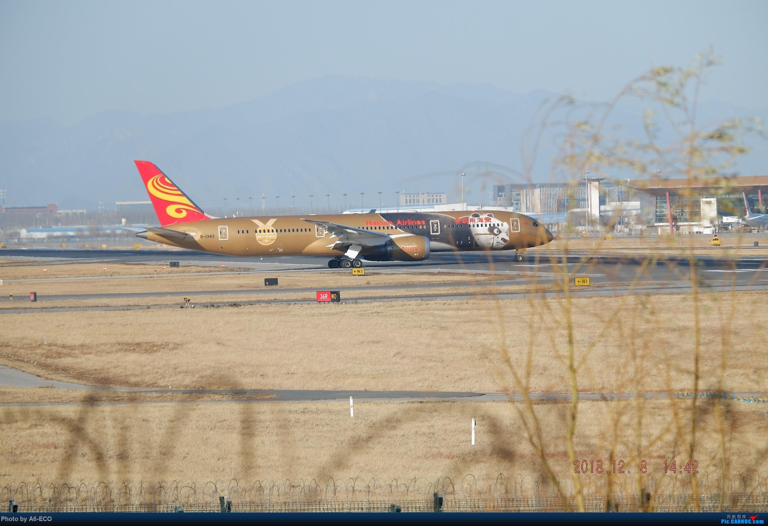 Re:[原创]【Siriの拍机】换镜头,文末有彩蛋! BOEING 787-9 B-1343 中国北京首都国际机场