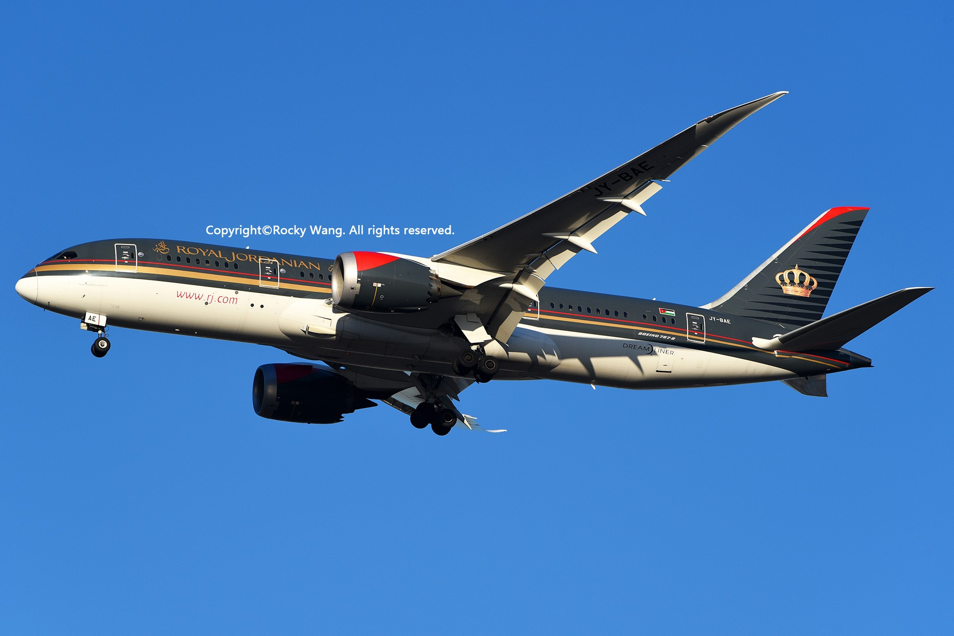 Re:[原创]KJFK 30图 BOEING 787-8 DREAMLINER JY-BAE New York John F. Kennedy Int'l Airport