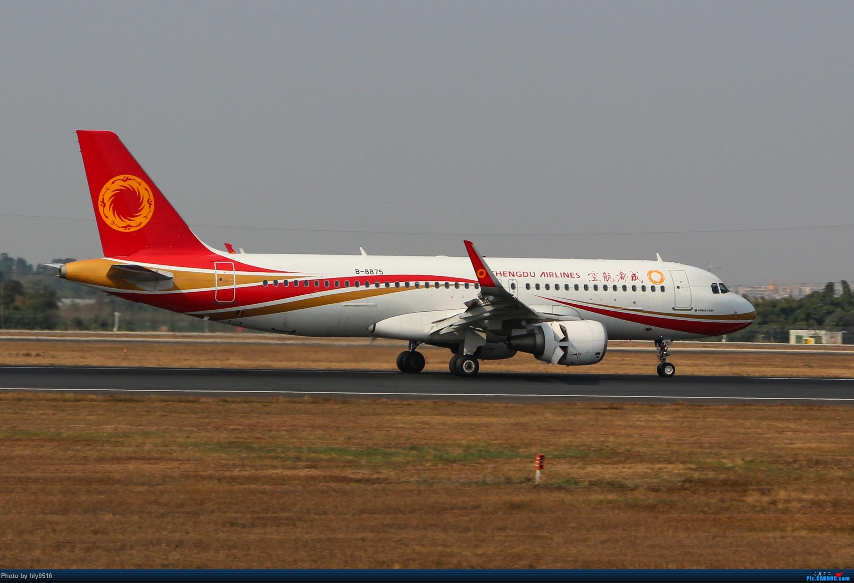 Re:[原创]【CTU】冬至拍机,近期的CTU日常 AIRBUS A320-200 B-8875 中国成都双流国际机场